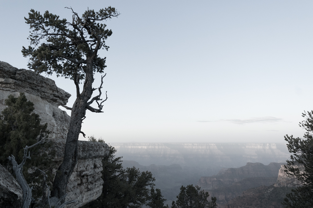 2016_Grand Canyon-0328.jpg