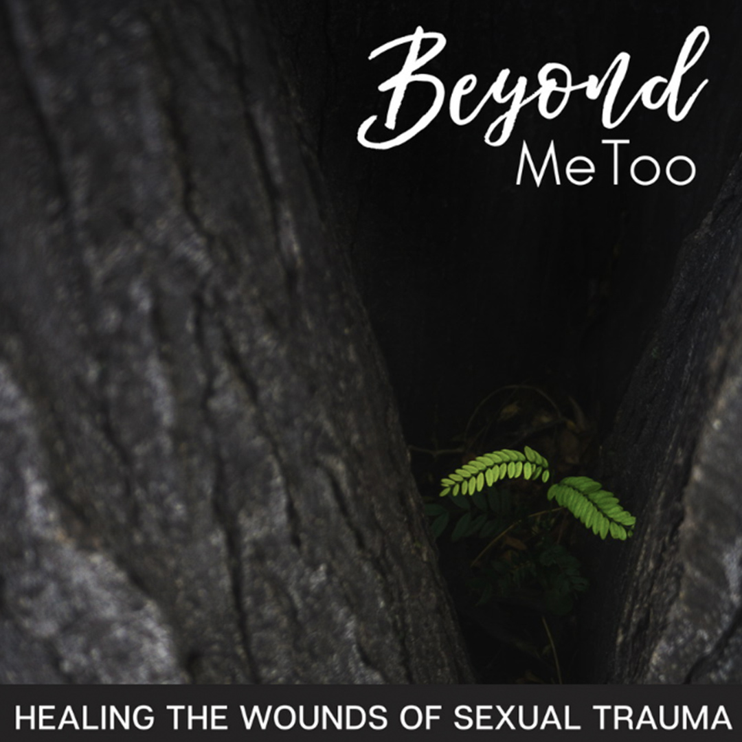 Beyond MeToo Podcast Interview -