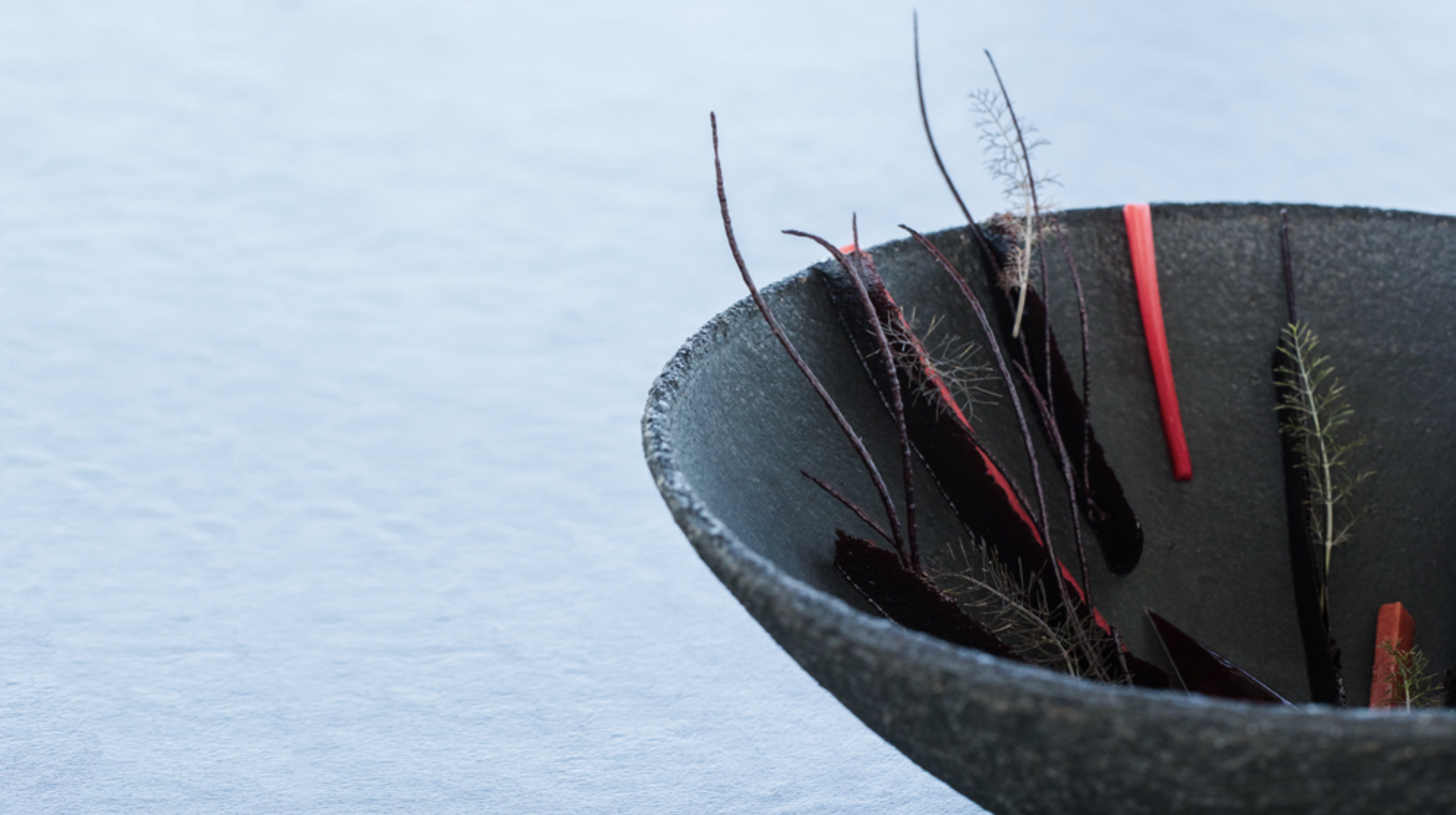 Black raspberry, meadowsweet, black carrot   Photo:  Jessica Sample    Ceramic vessel by MATCH stoneware