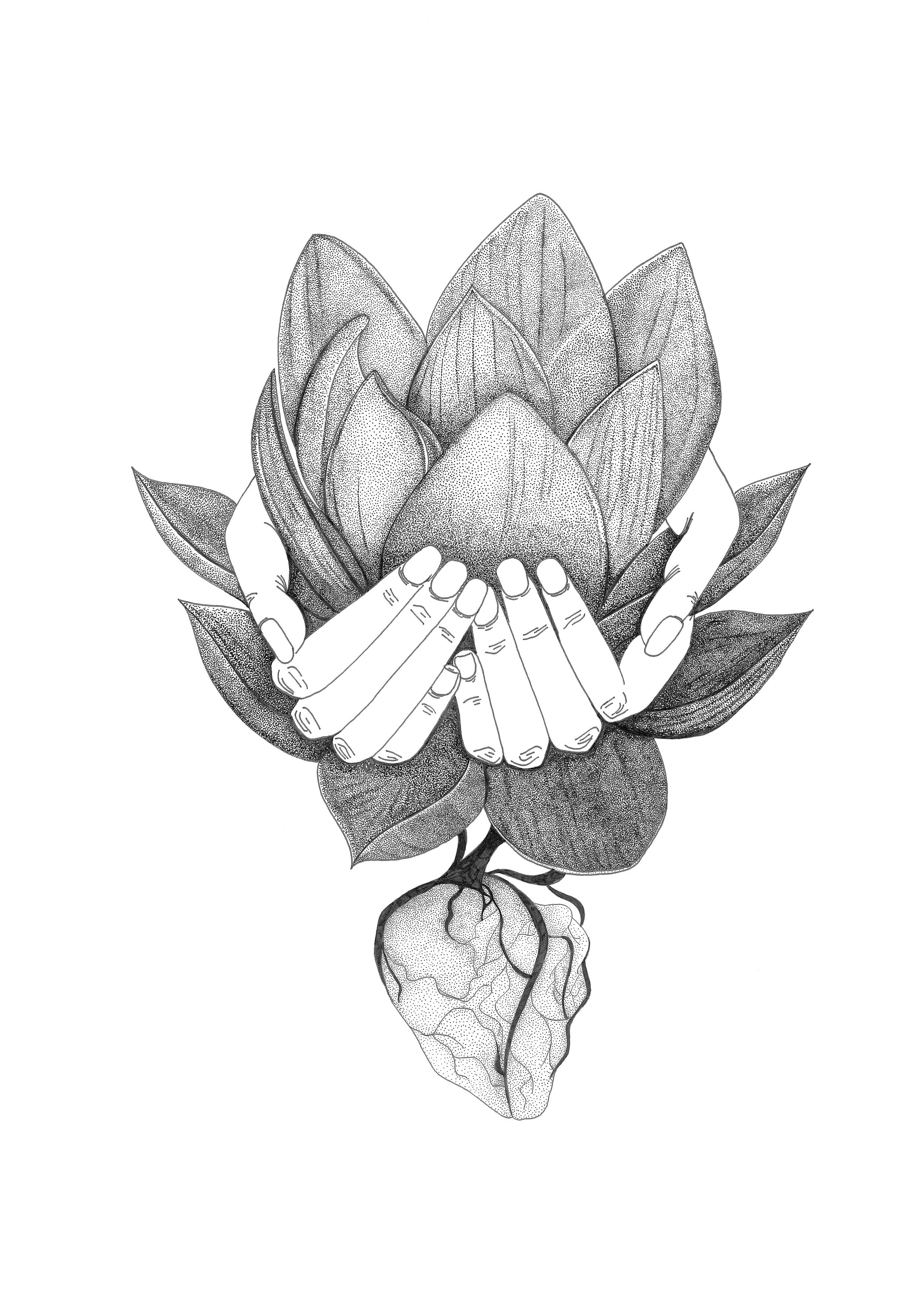 Lotus Heart-2017.jpg