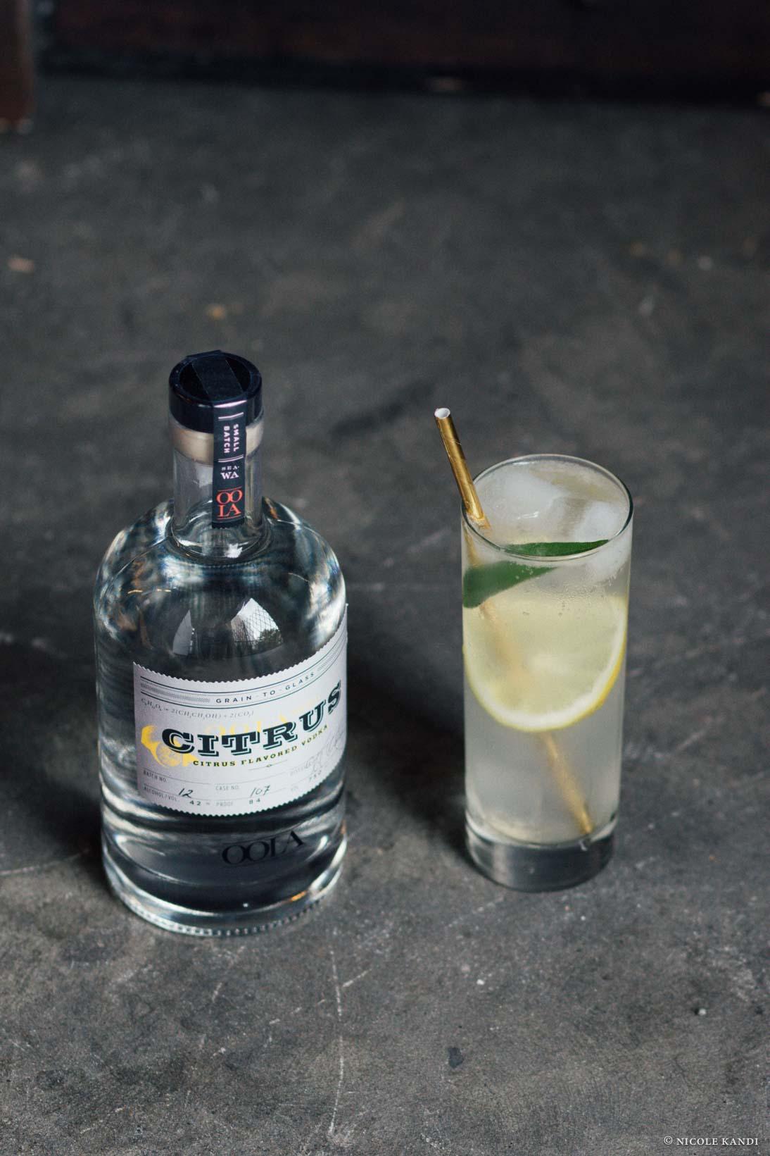 citrus_vodka_collins-2.jpg