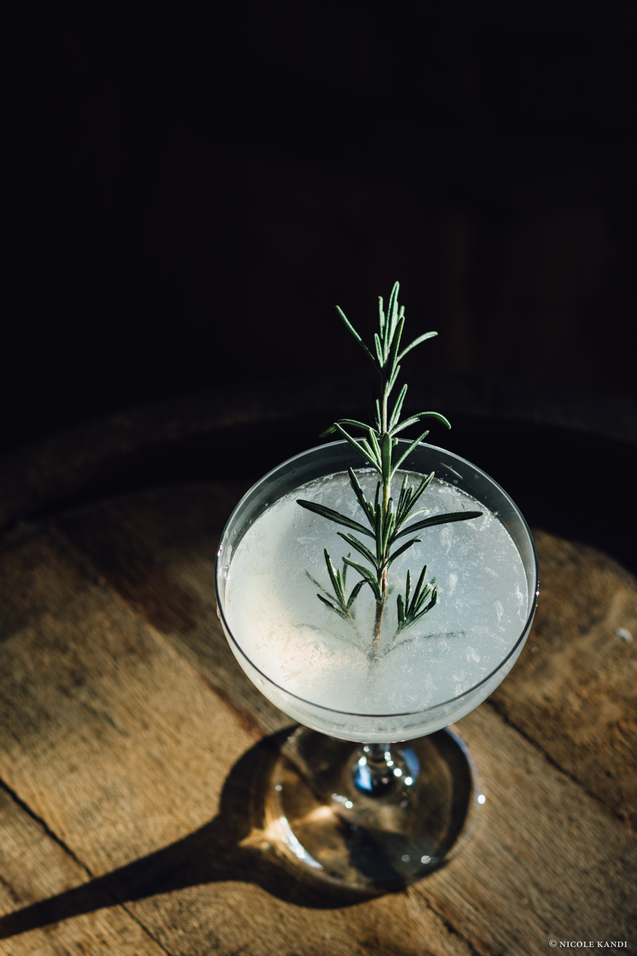 rv_gimlet_rosemary.jpg