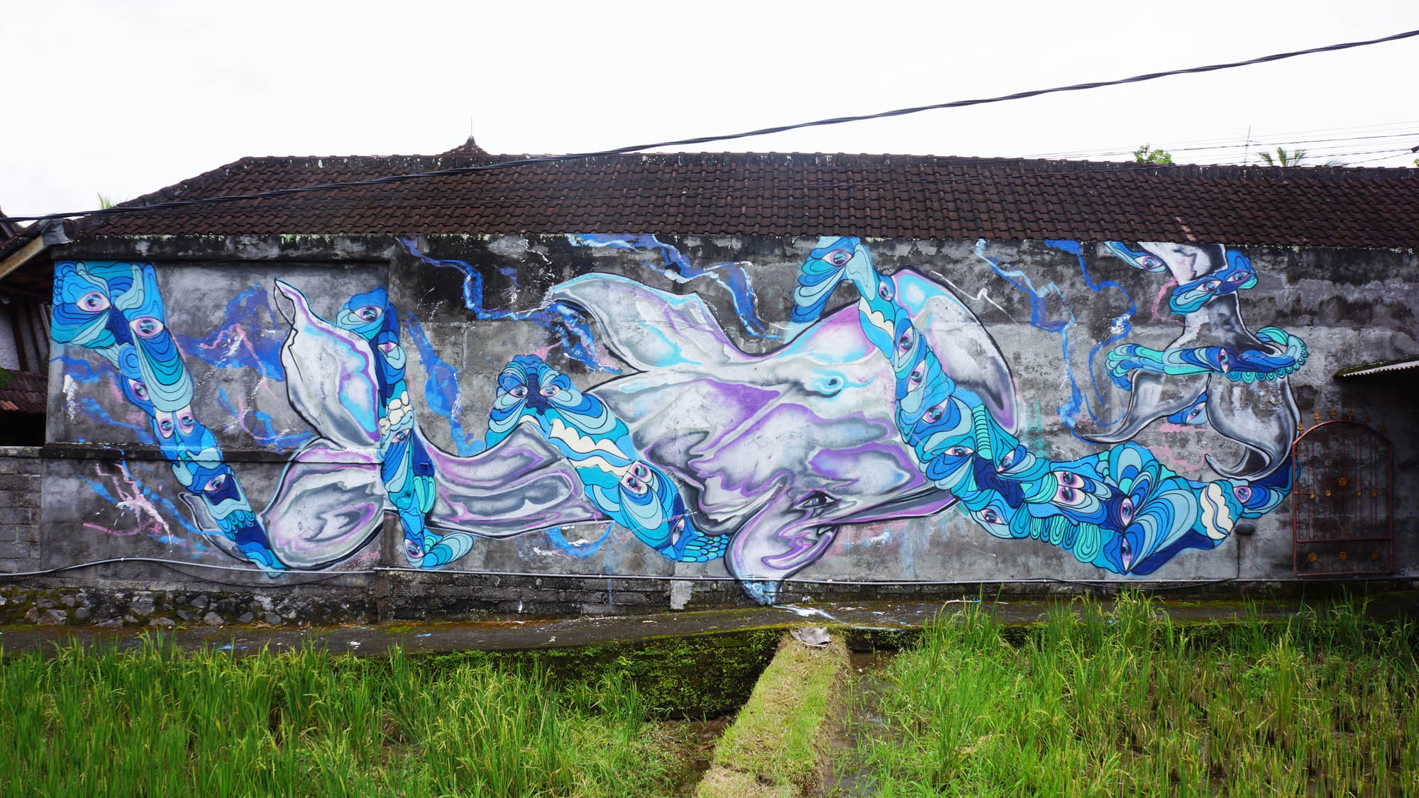 Collaboration with LEZART painted in Ubud, Bali as a part of my artist residency with Cata Odata