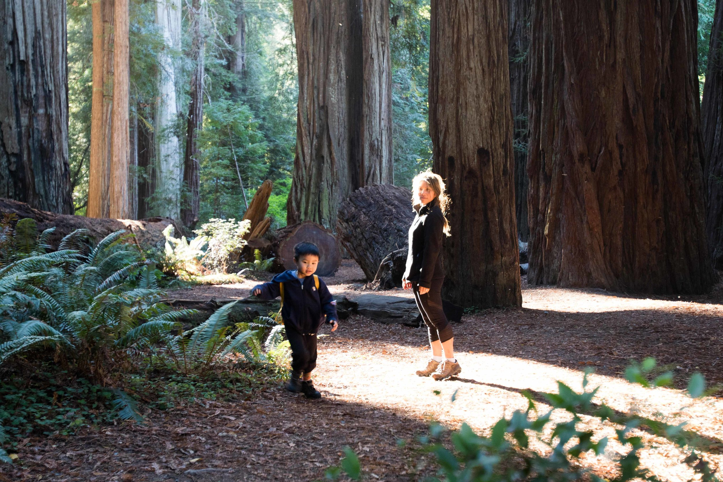 2018_Redwood-58.jpg