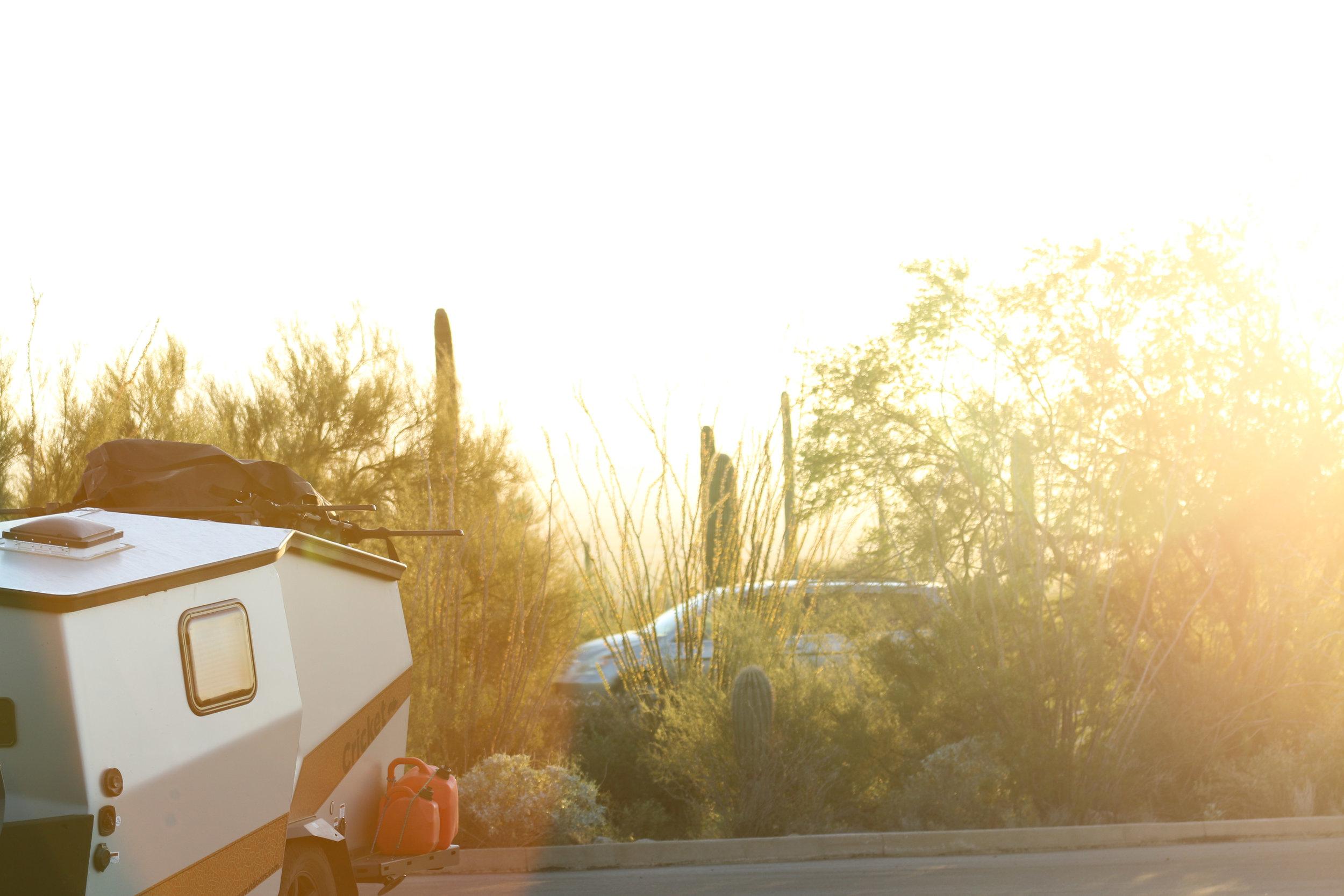 2018_Saguaro-33.jpg