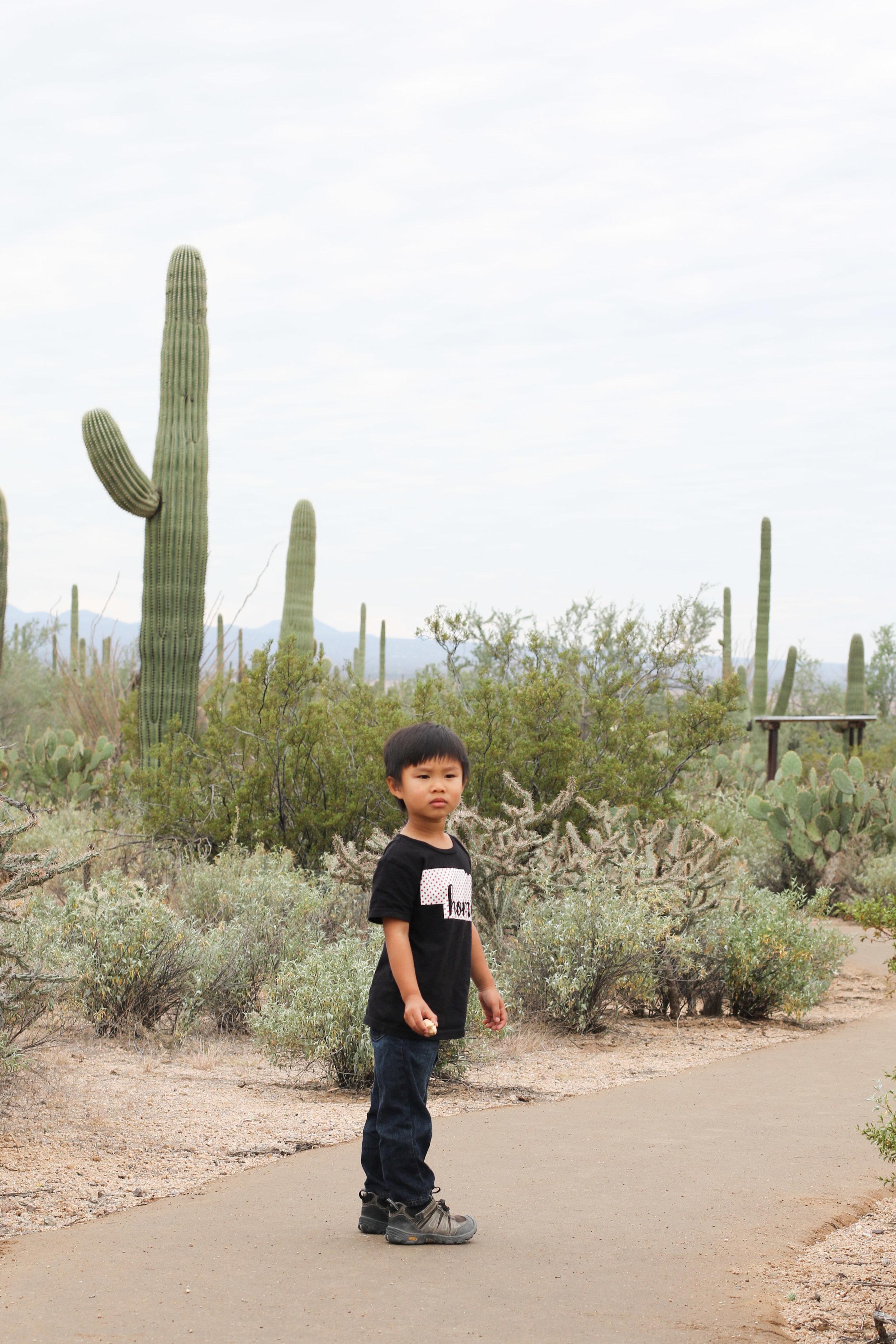 2018_Saguaro-117.jpg