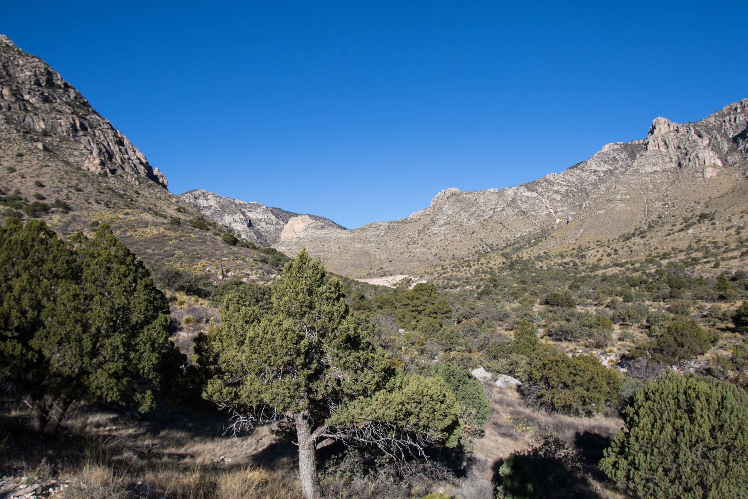 Guadalupe Mountains - National Park