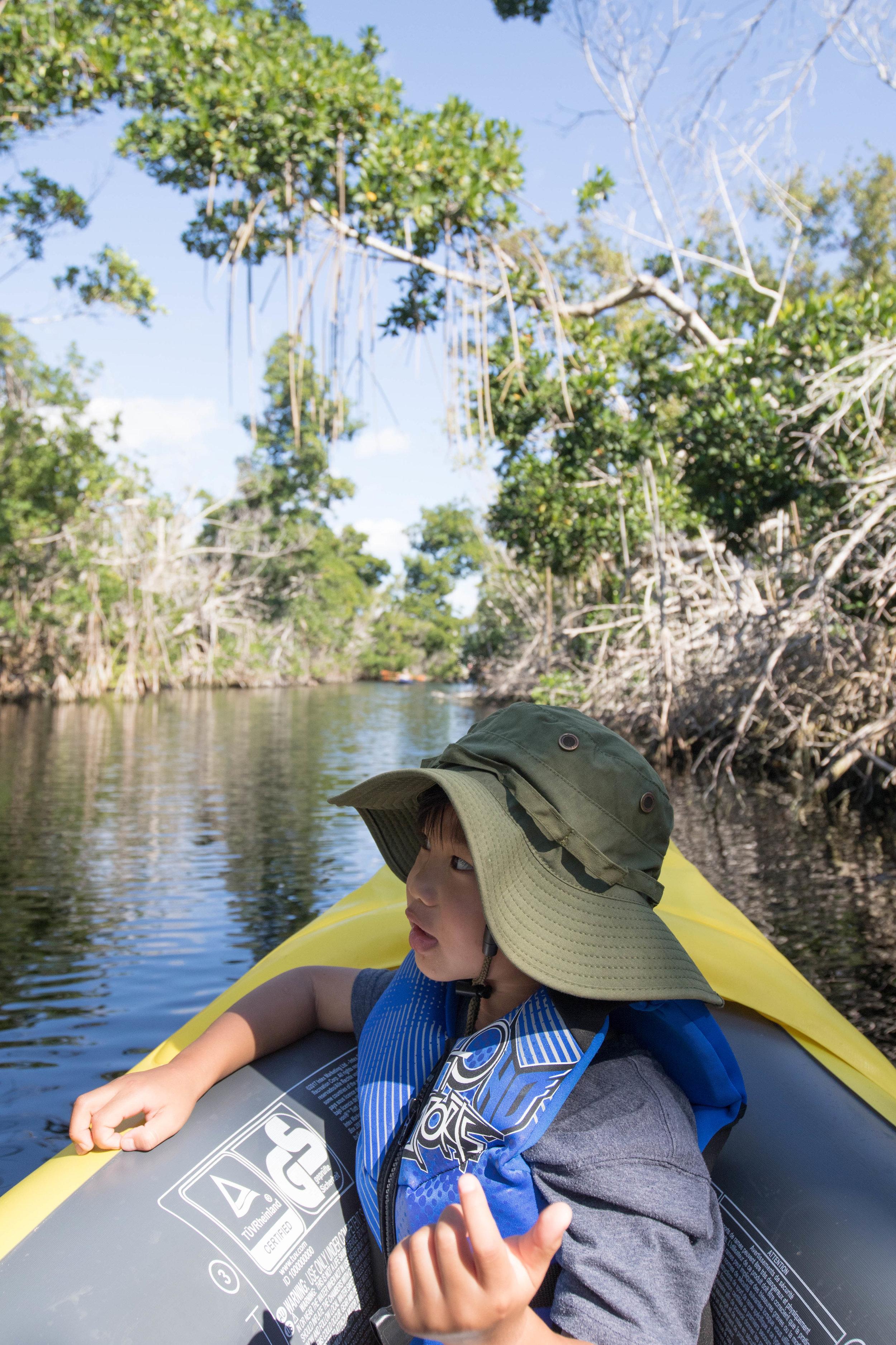 2019_Everglades-30.jpg