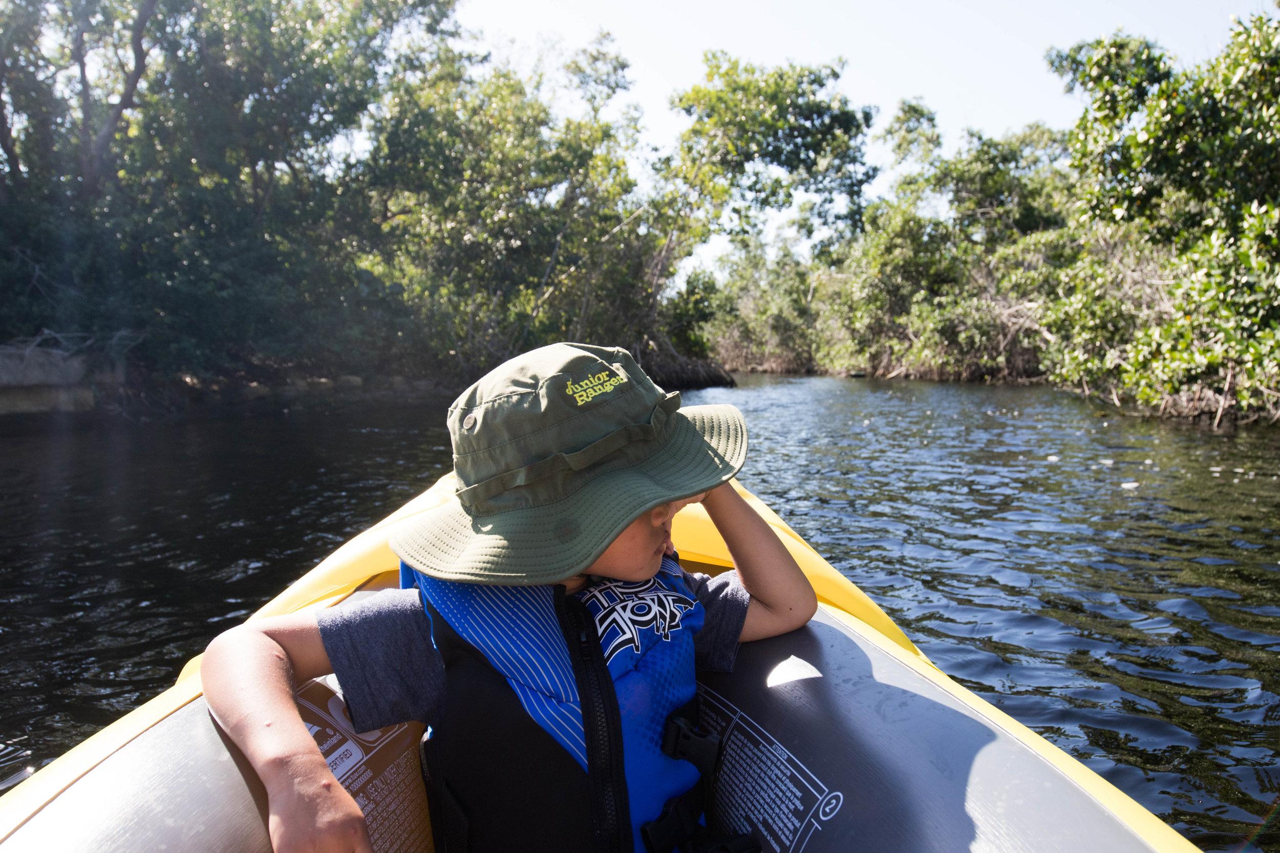 2019_Everglades-34.jpg
