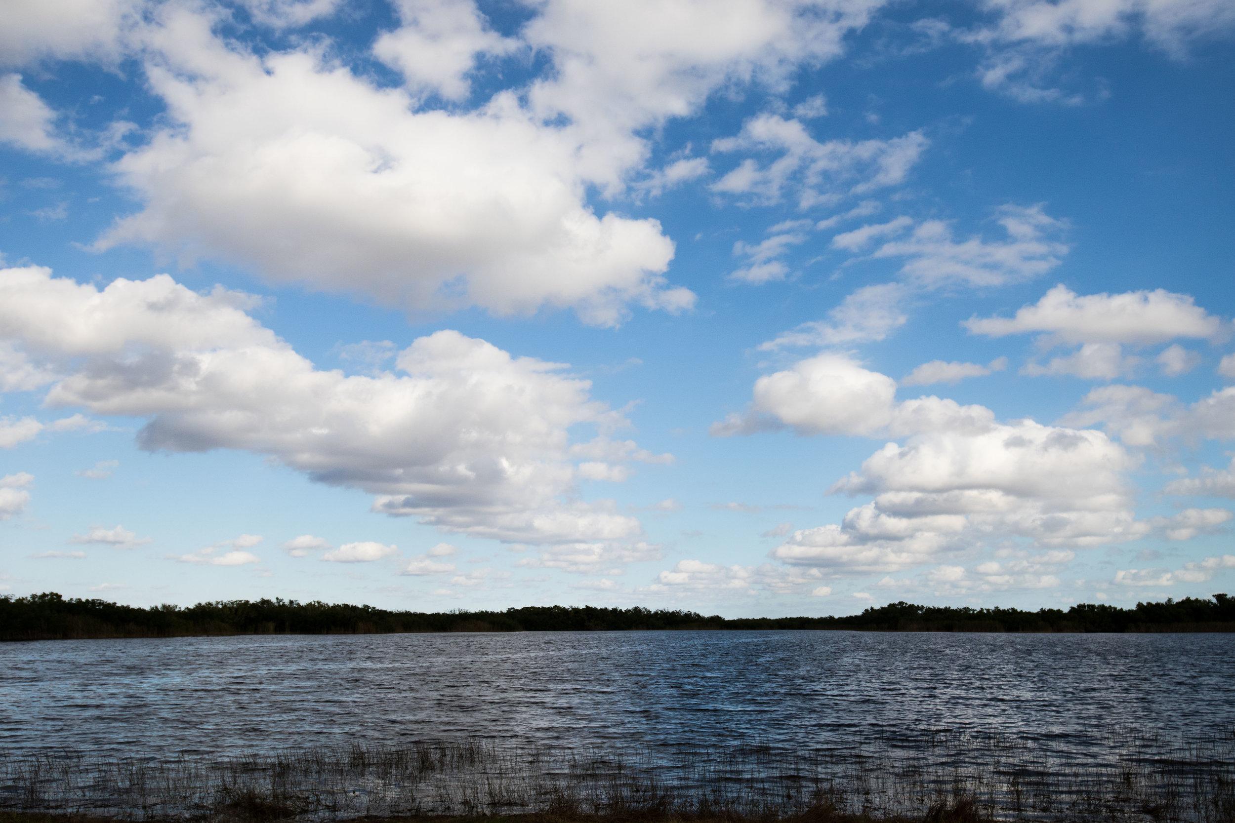 2019_Everglades-60.jpg