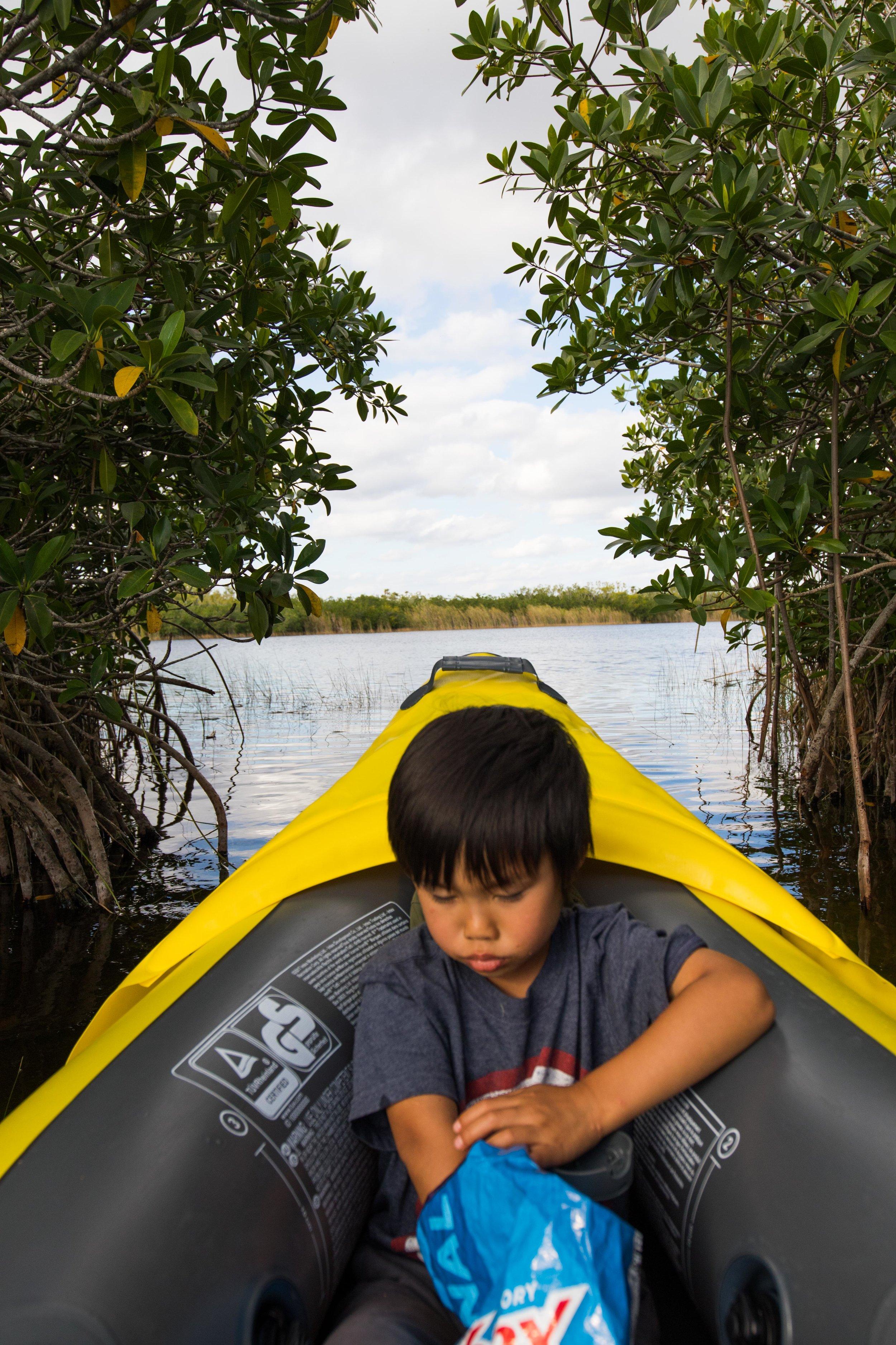 2019_Everglades-77.jpg