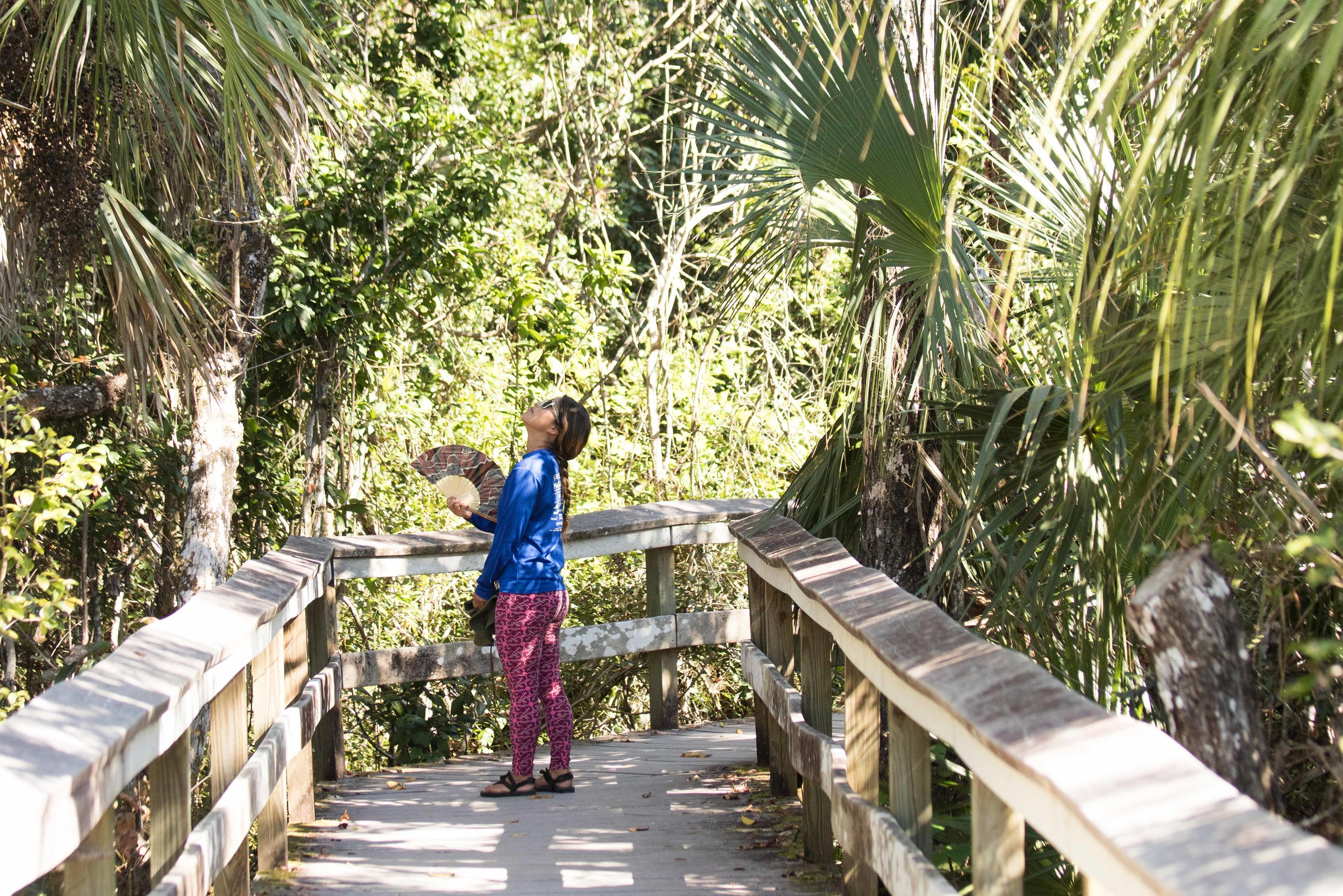 2019_Everglades-160.jpg