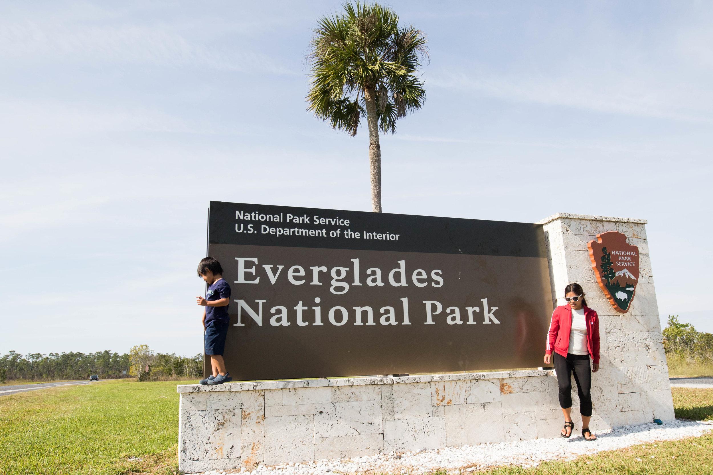 2019_Everglades-463.jpg
