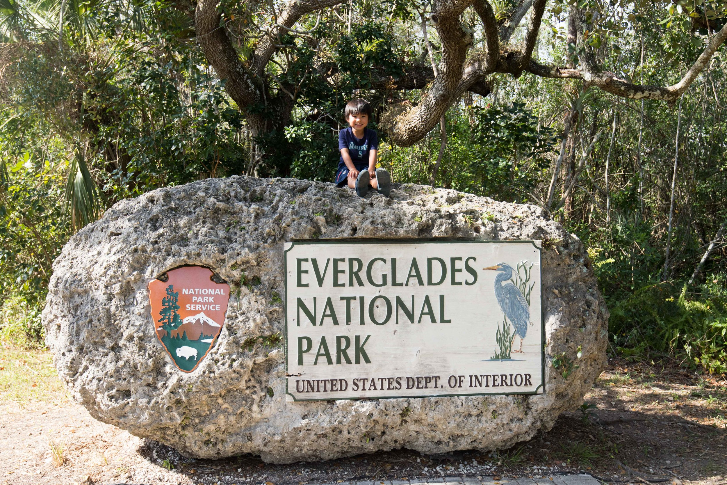 2019_Everglades-469.jpg