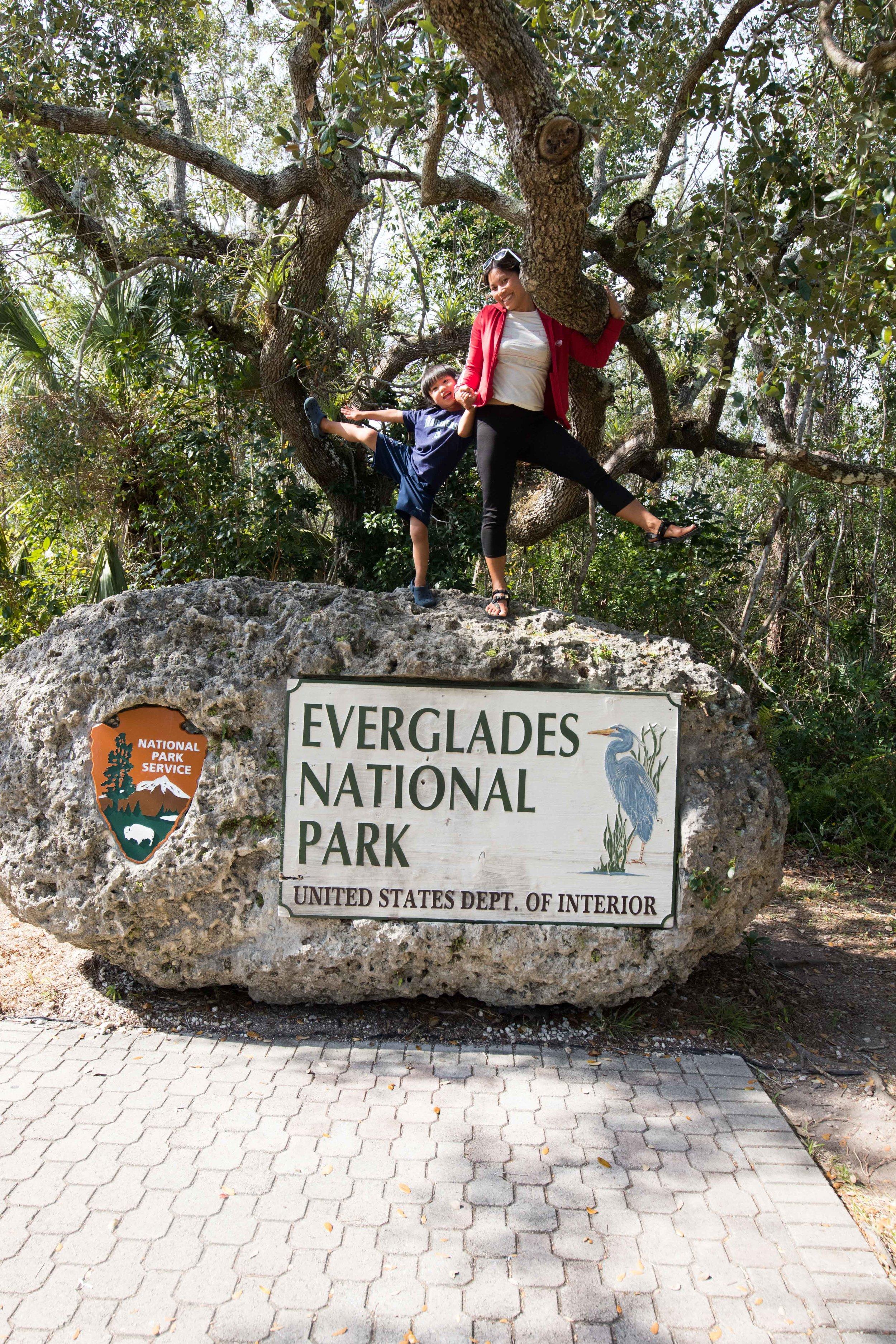 2019_Everglades-473.jpg