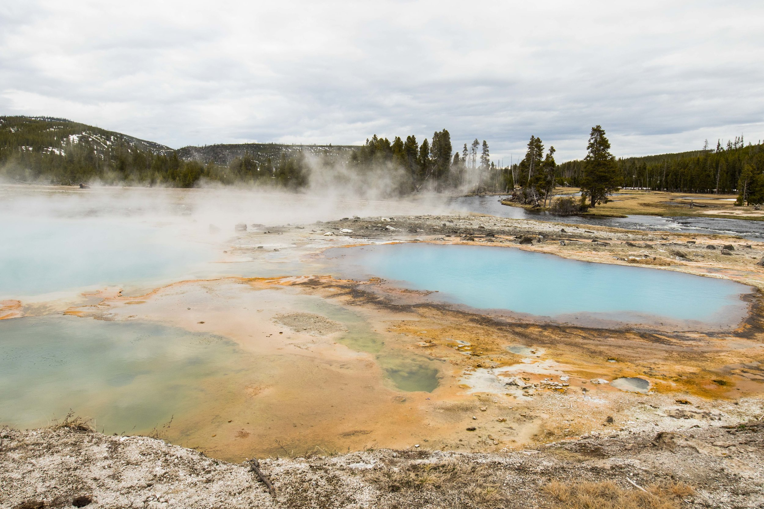 2019_Yellowstone-63.jpg