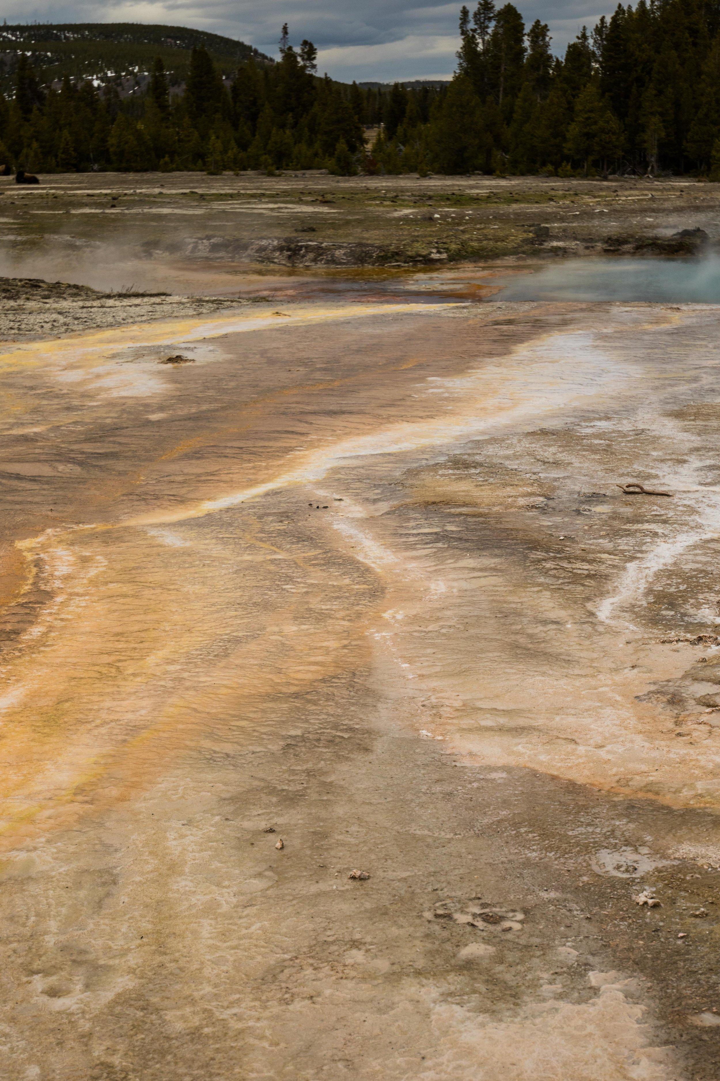 2019_Yellowstone-73.jpg