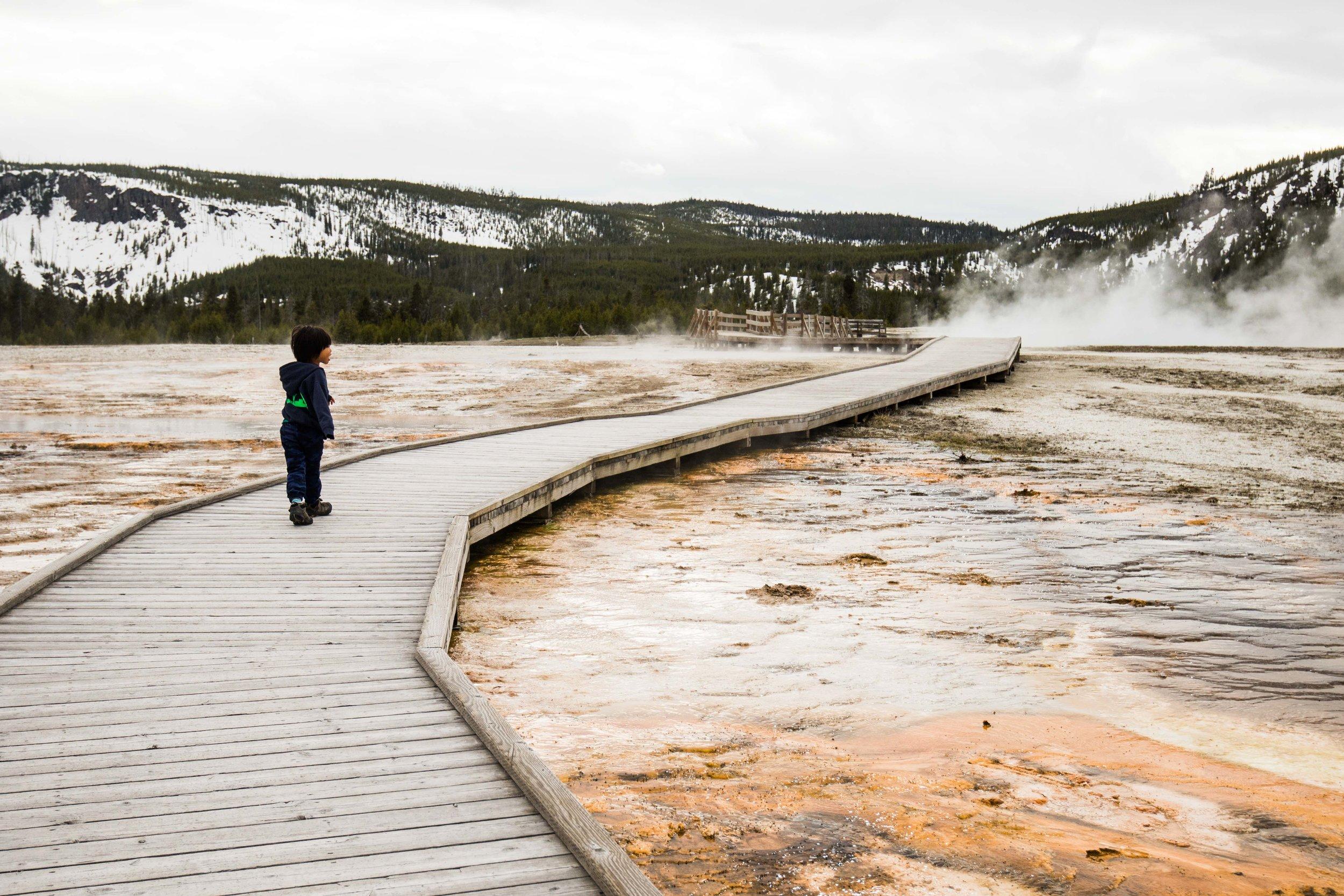 2019_Yellowstone-75.jpg