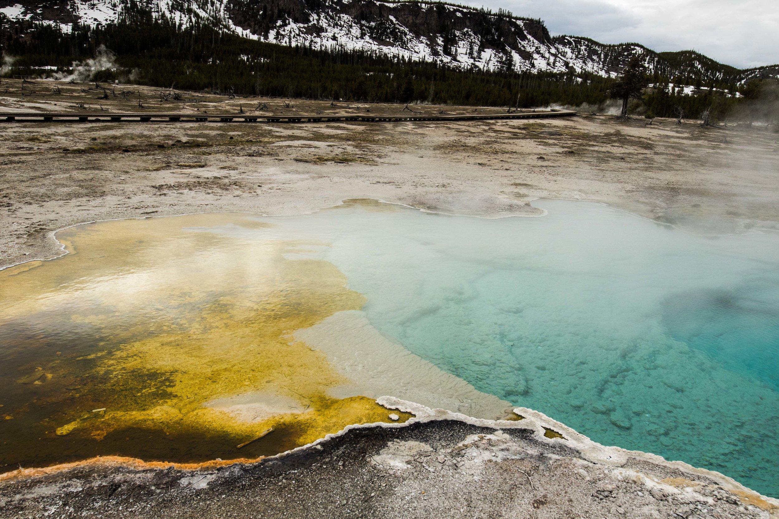 2019_Yellowstone-116.jpg