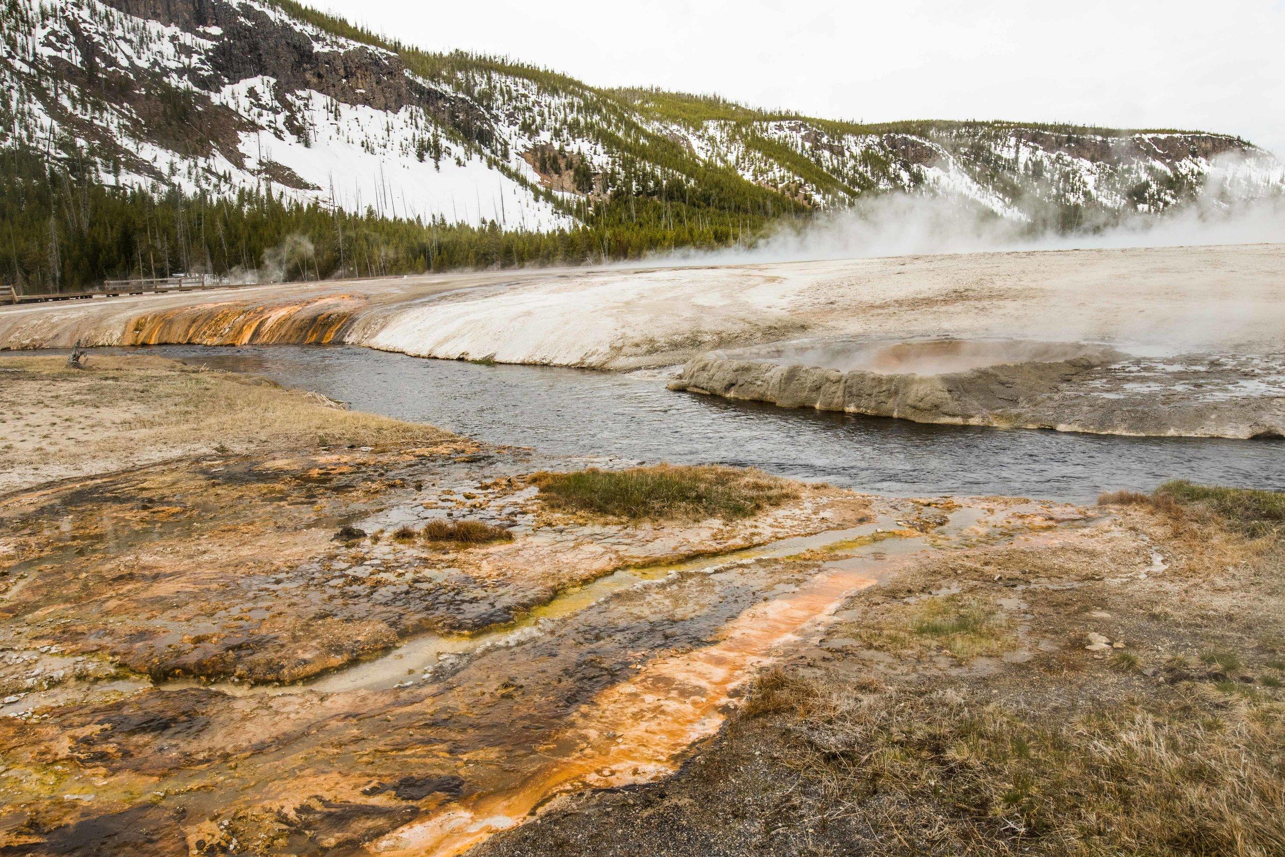 2019_Yellowstone-152.jpg