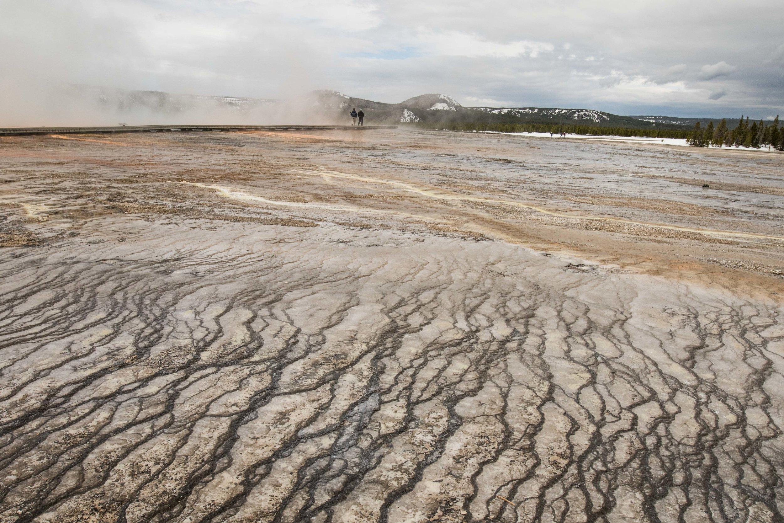 2019_Yellowstone-185.jpg