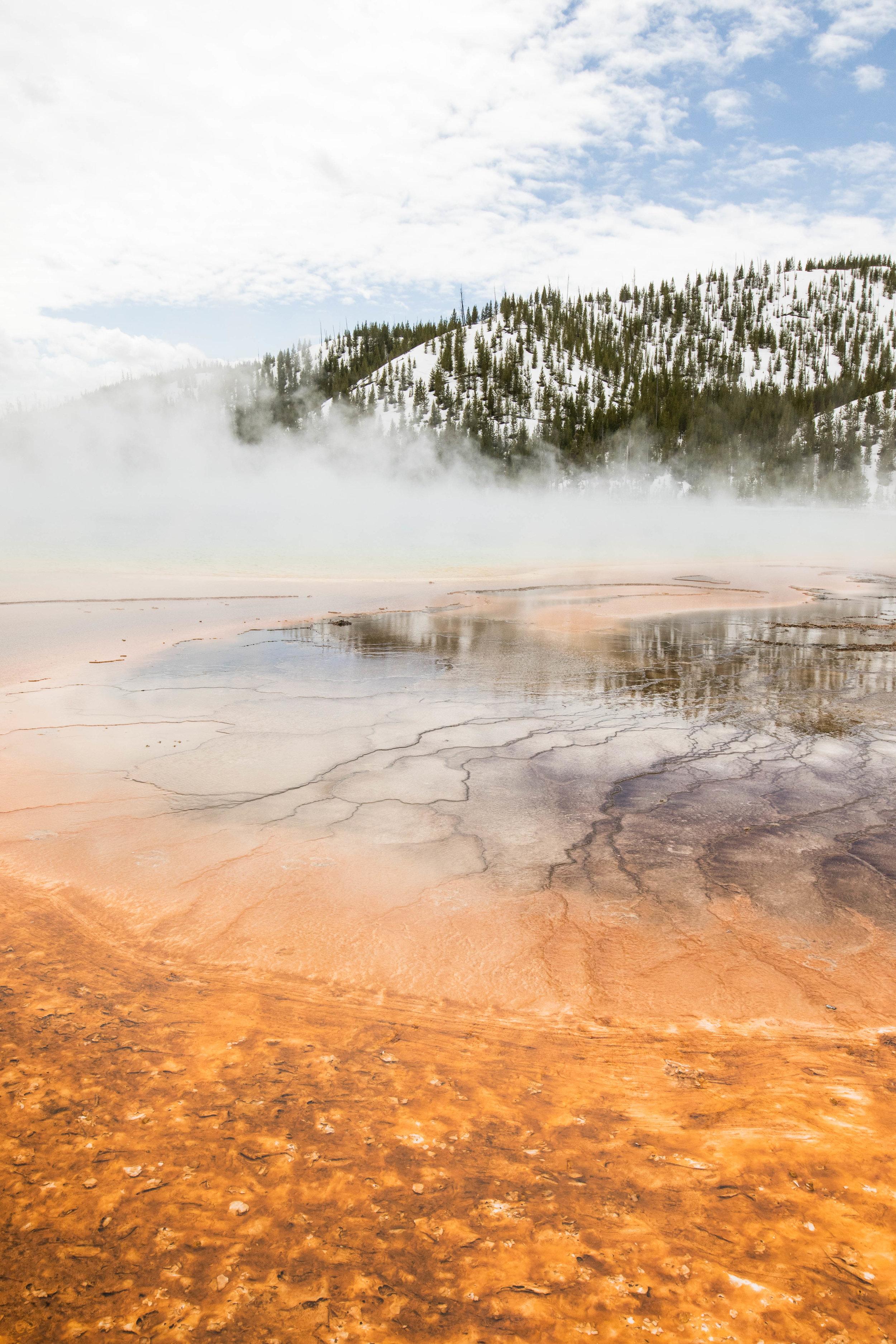 2019_Yellowstone-215.jpg