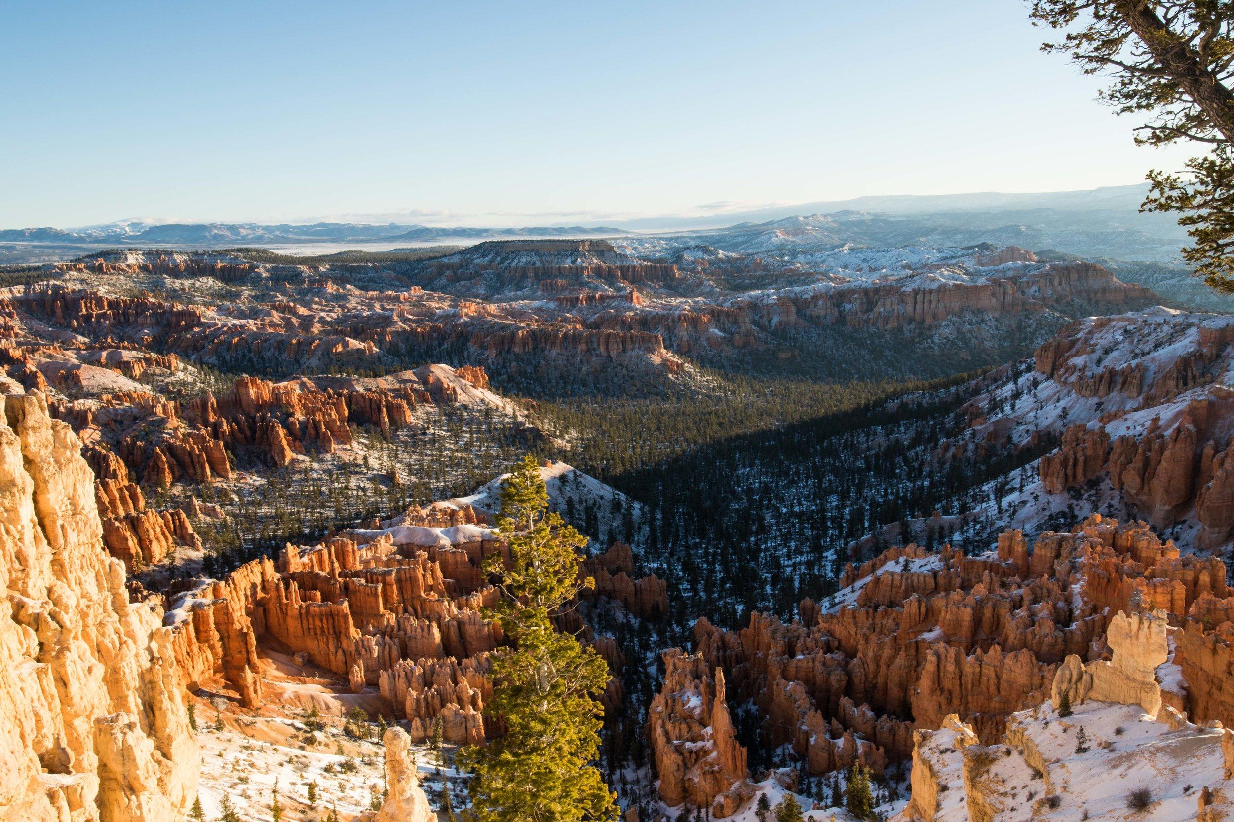 2019_Bryce_Canyon-68.jpg