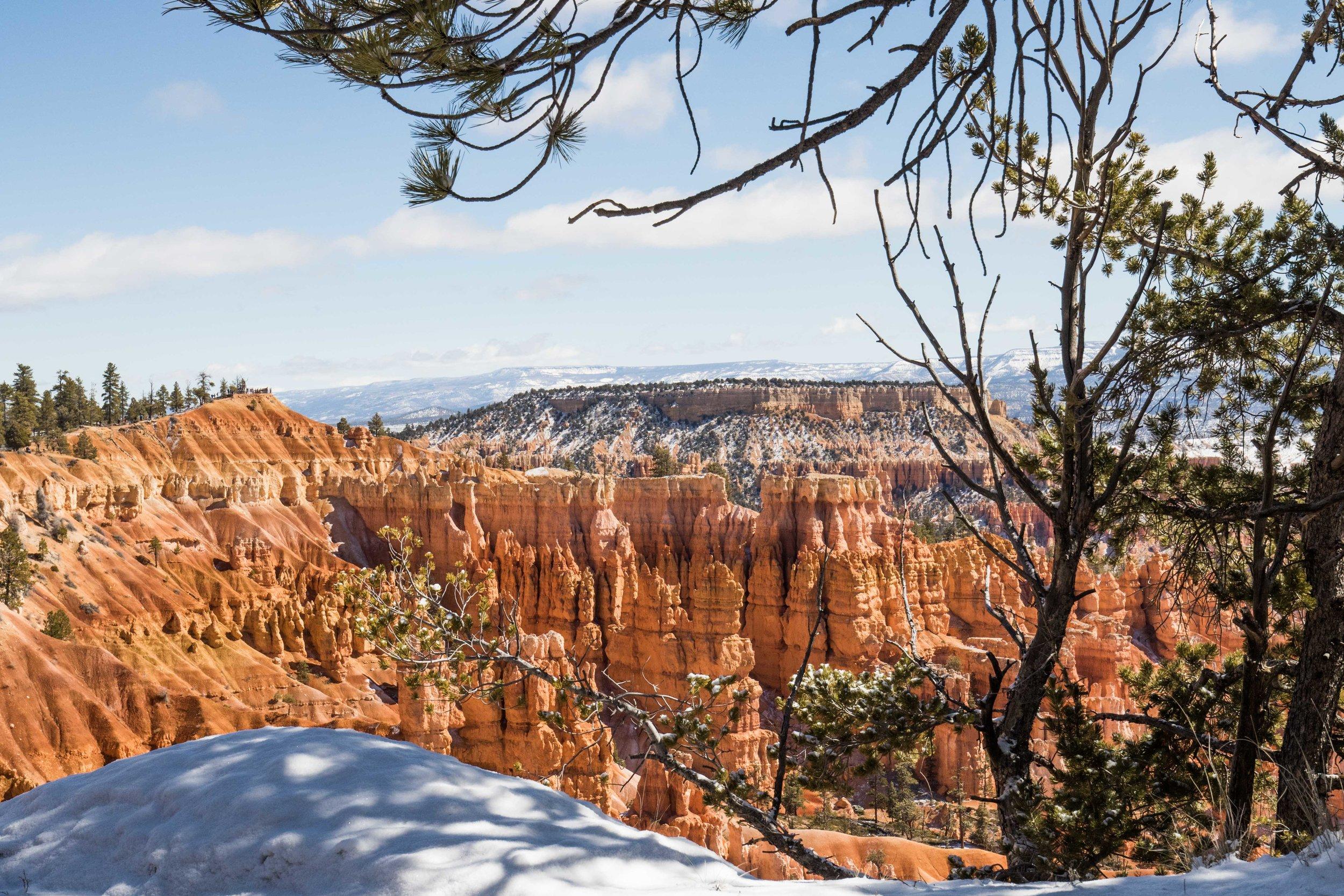 2019_Bryce_Canyon-86.jpg