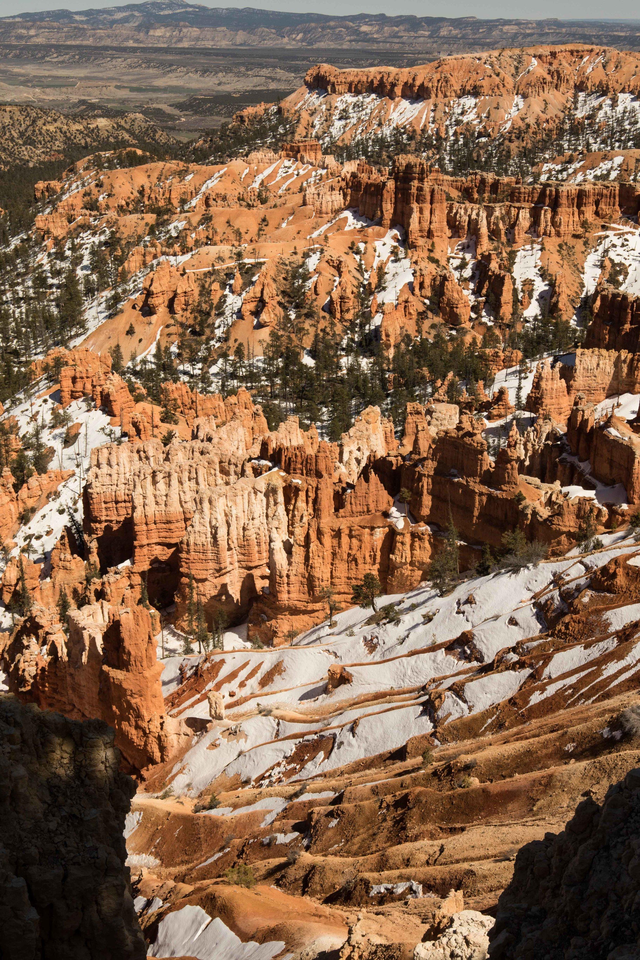 2019_Bryce_Canyon-218.jpg