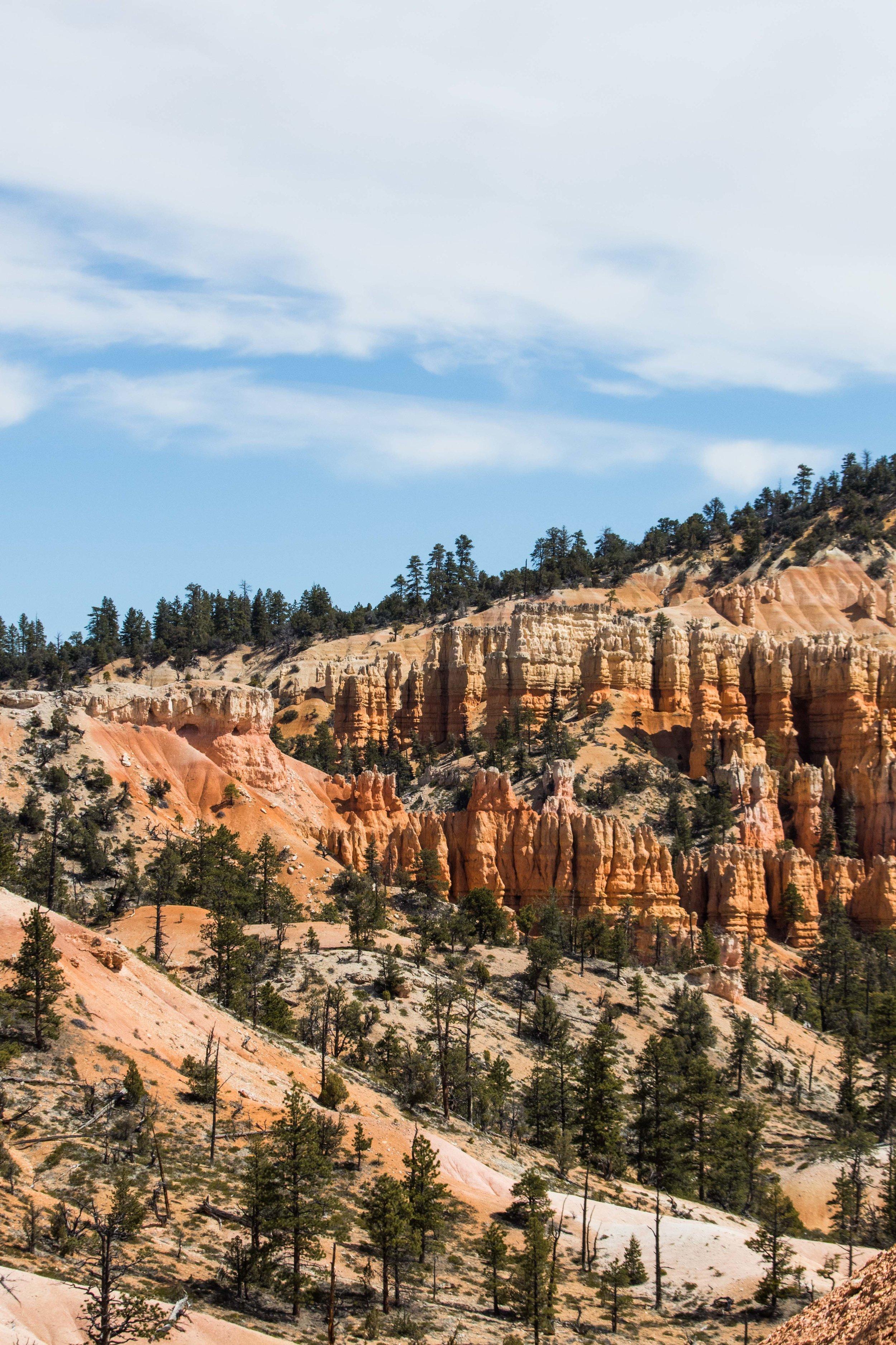 2019_Bryce_Canyon-291.jpg