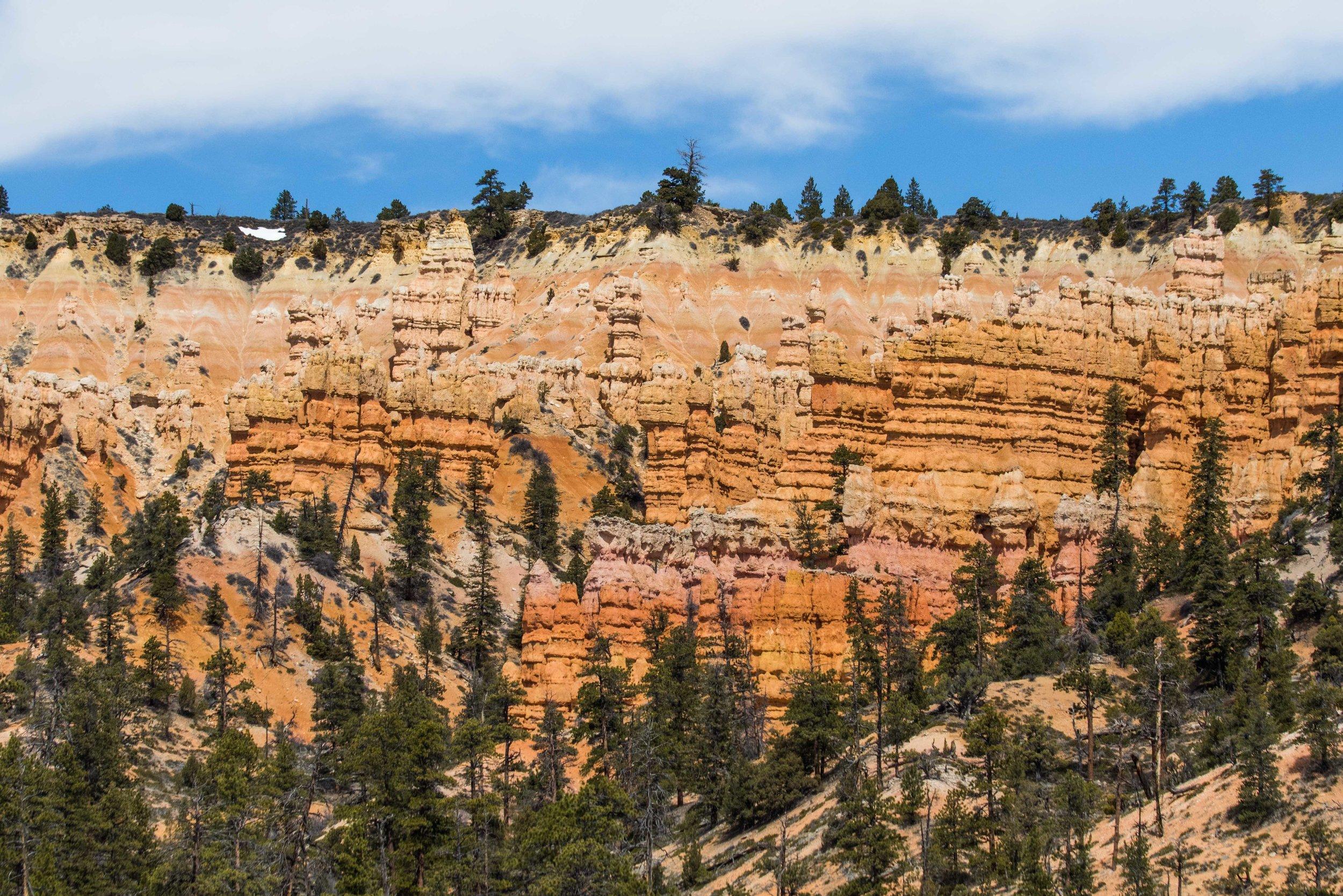 2019_Bryce_Canyon-308.jpg