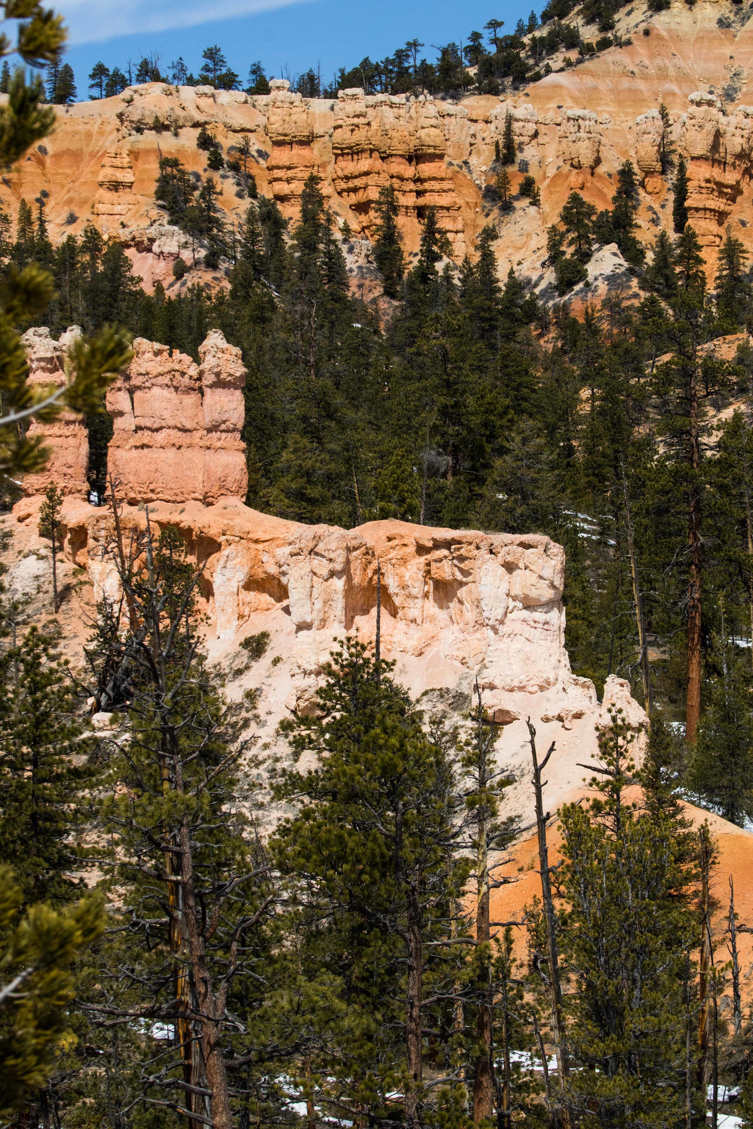 2019_Bryce_Canyon-309.jpg