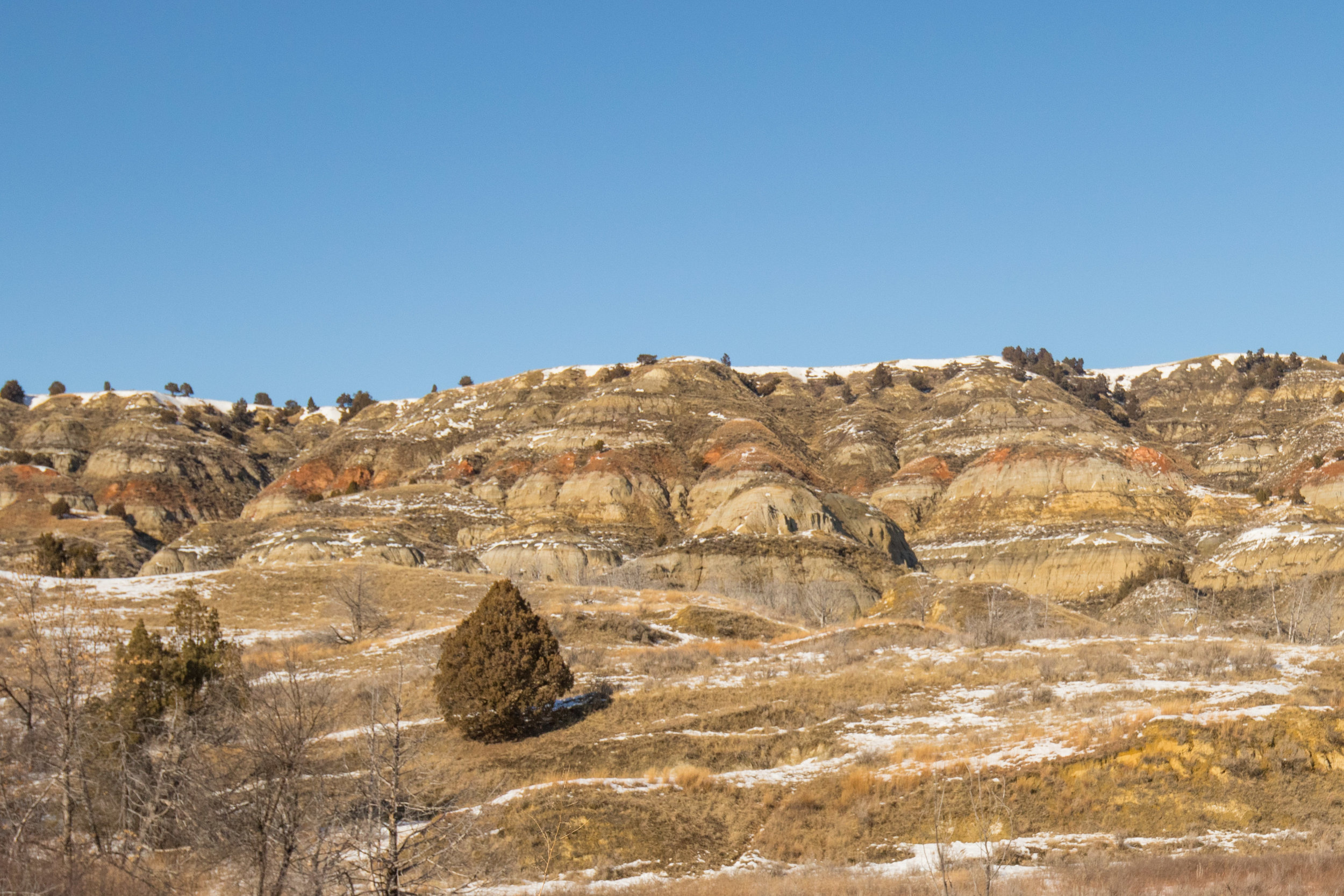 Theodore Roosevelt - National Park