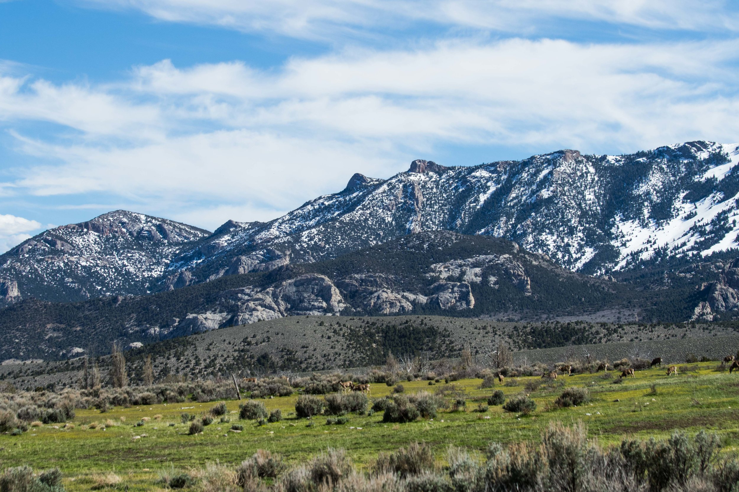 Great Basin - National Park