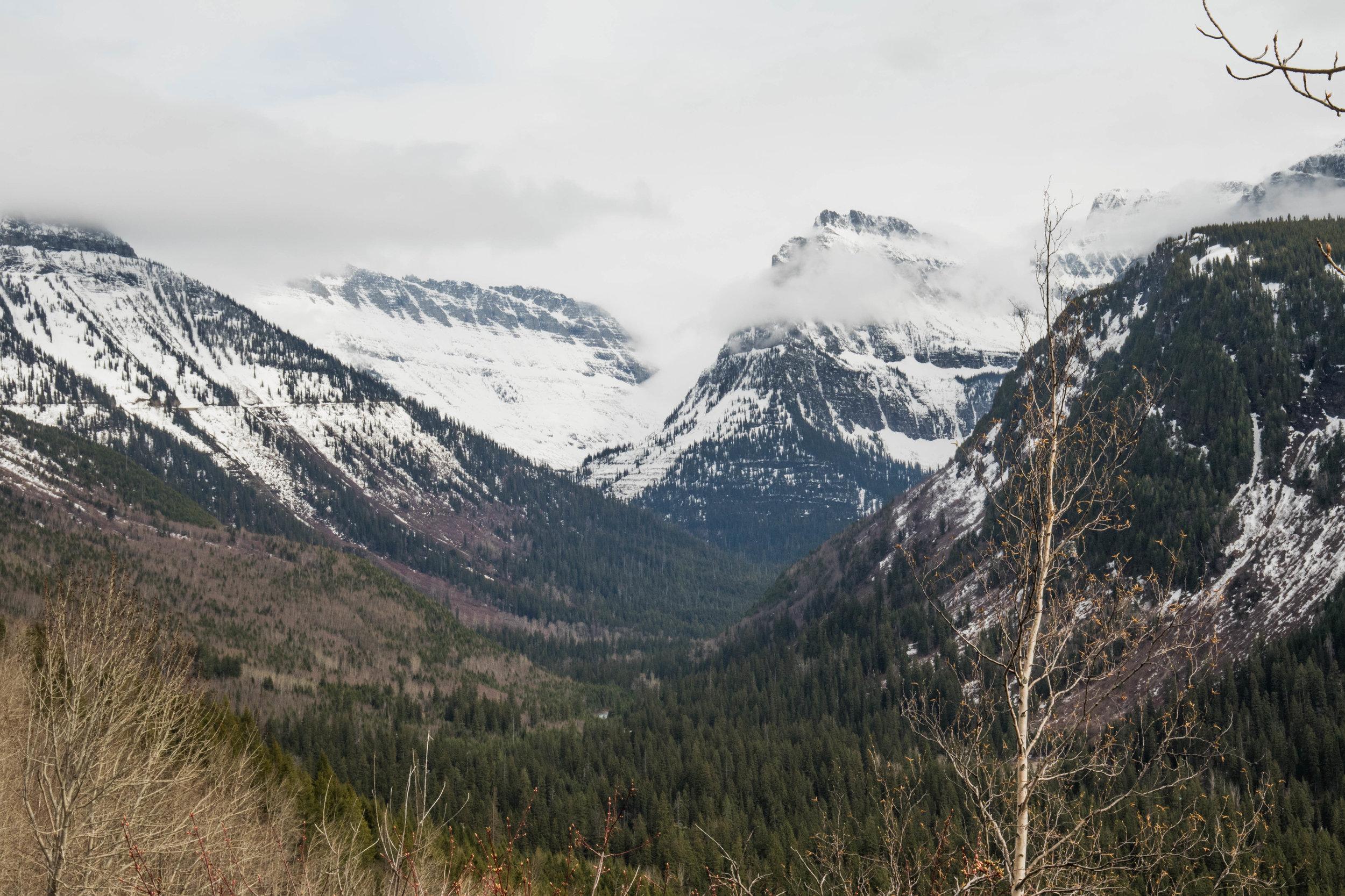 2019_Glacier-453.jpg