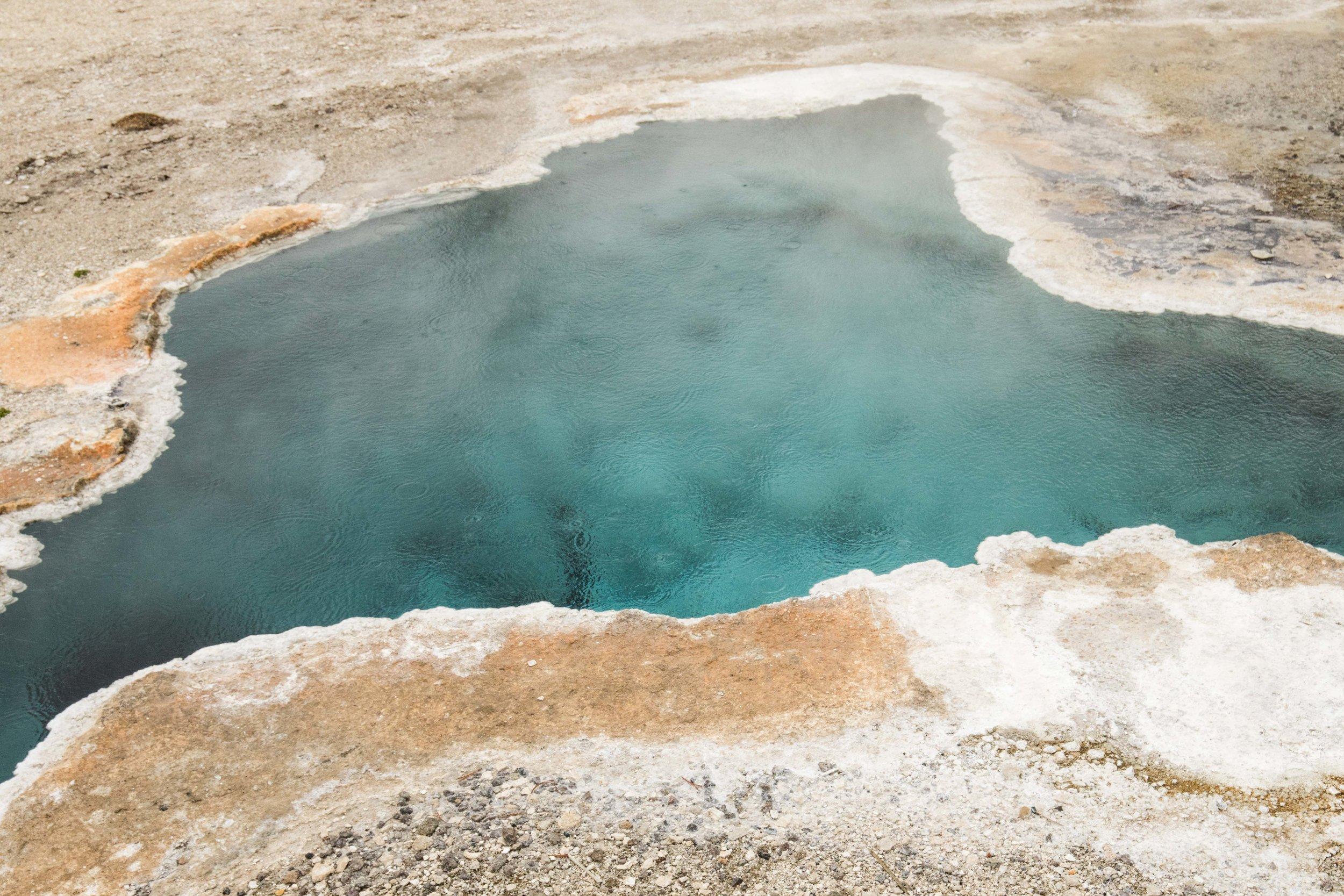 2019_Yellowstone-268.jpg