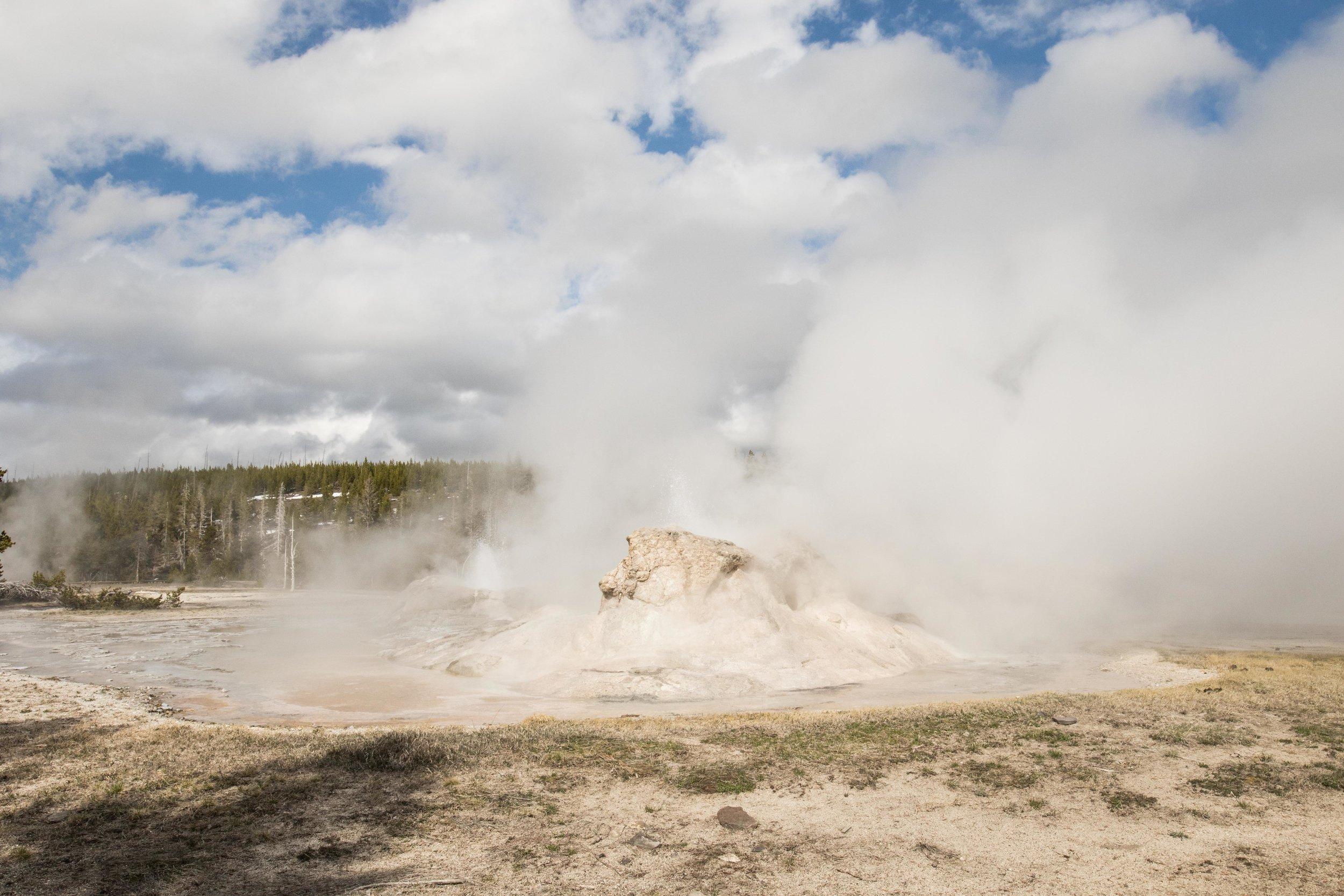2019_Yellowstone-345.jpg