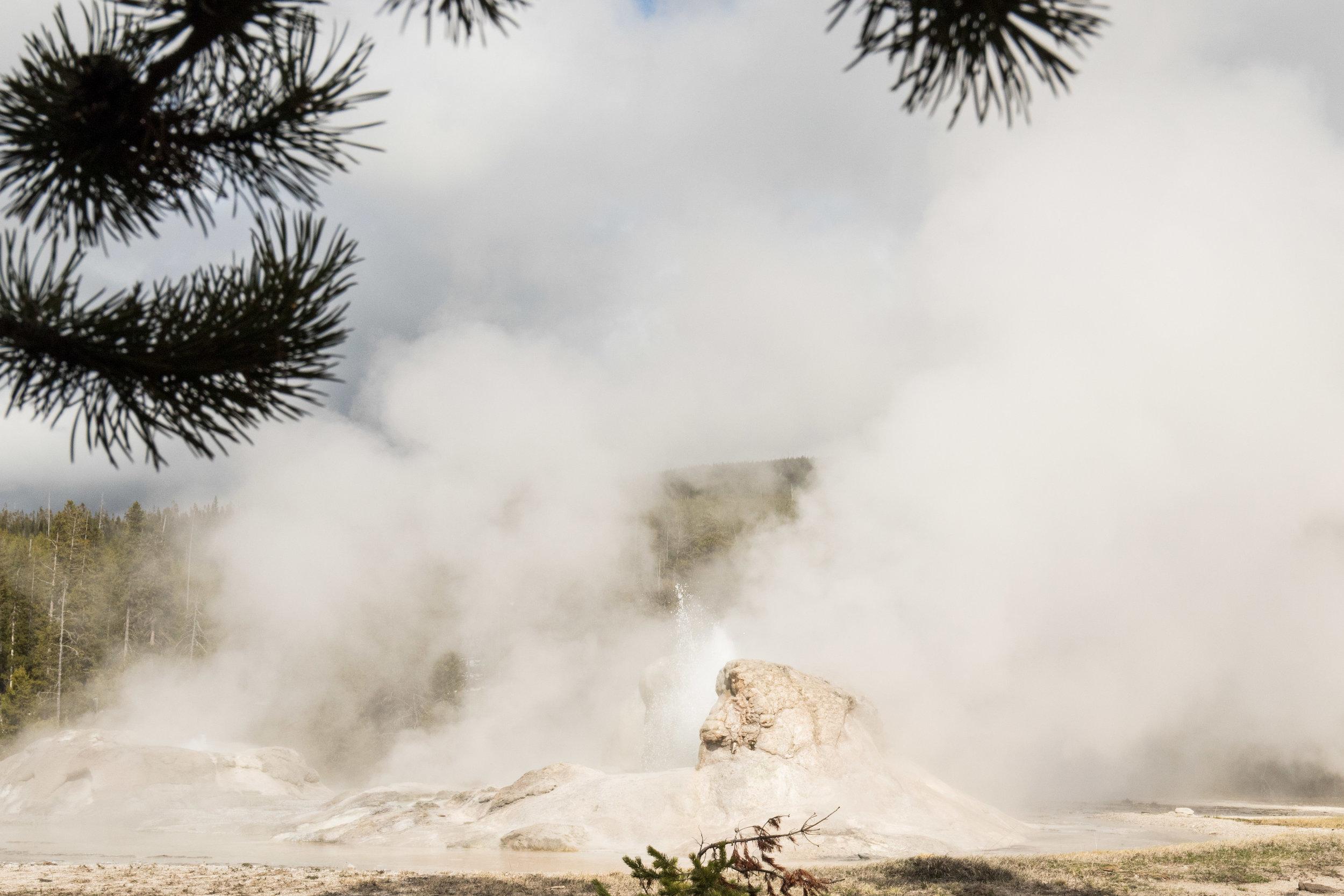 2019_Yellowstone-347.jpg
