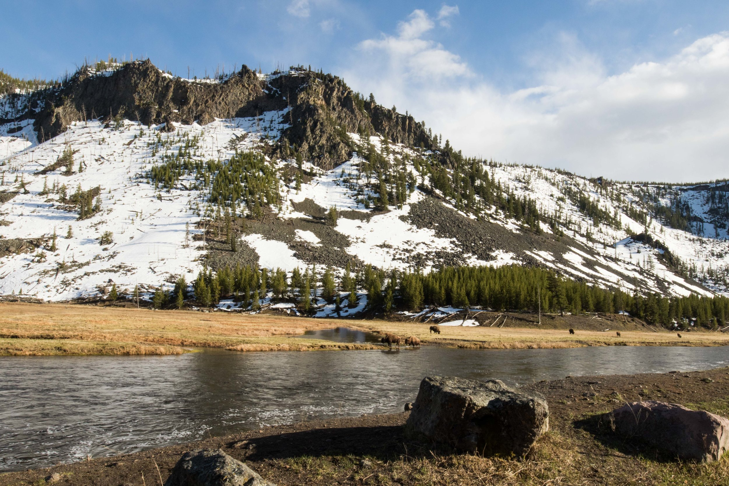 2019_Yellowstone-401.jpg