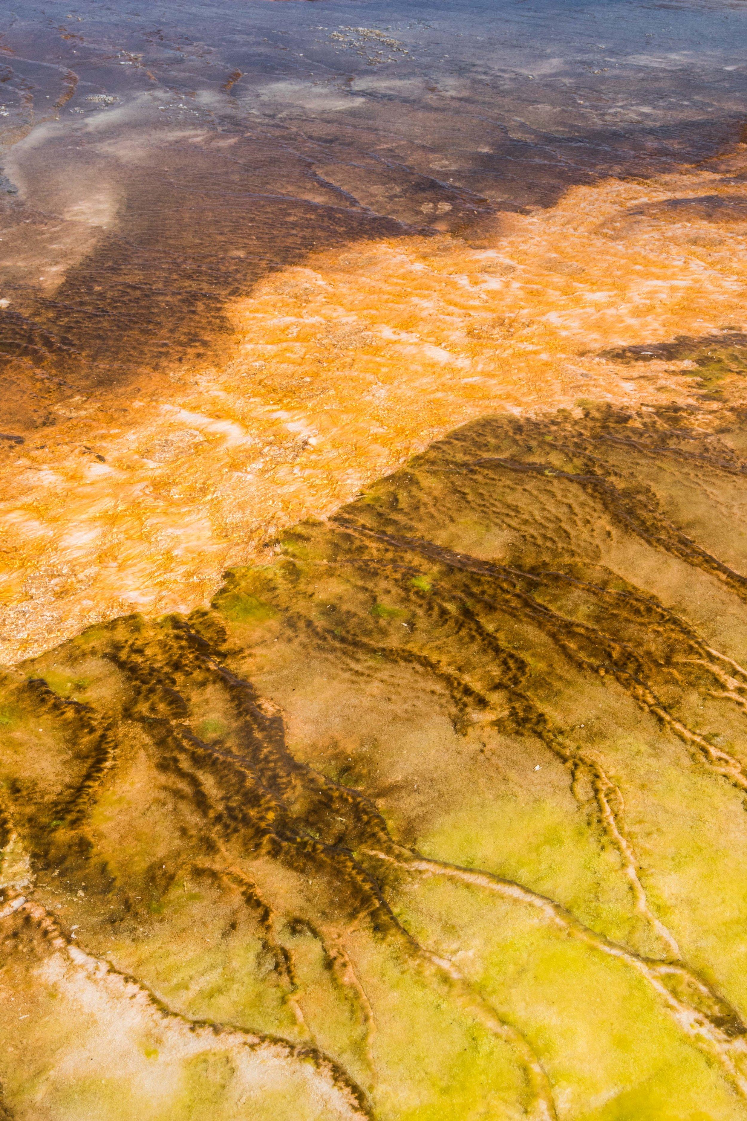 2019_Yellowstone-451.jpg