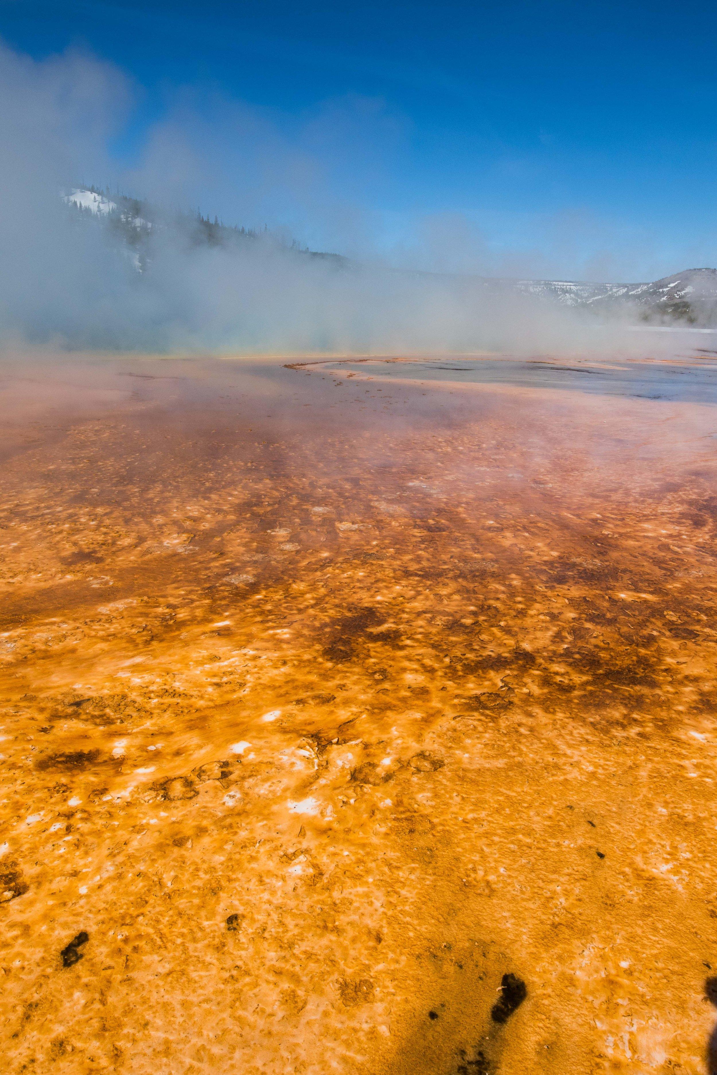 2019_Yellowstone-458.jpg