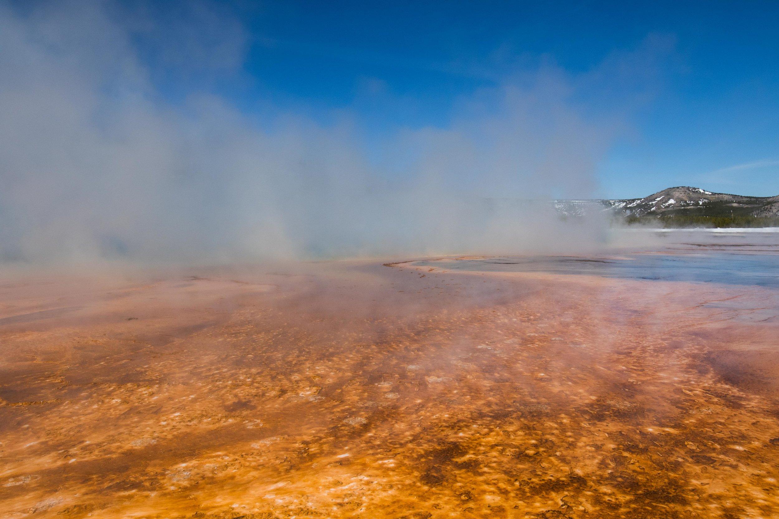 2019_Yellowstone-460.jpg