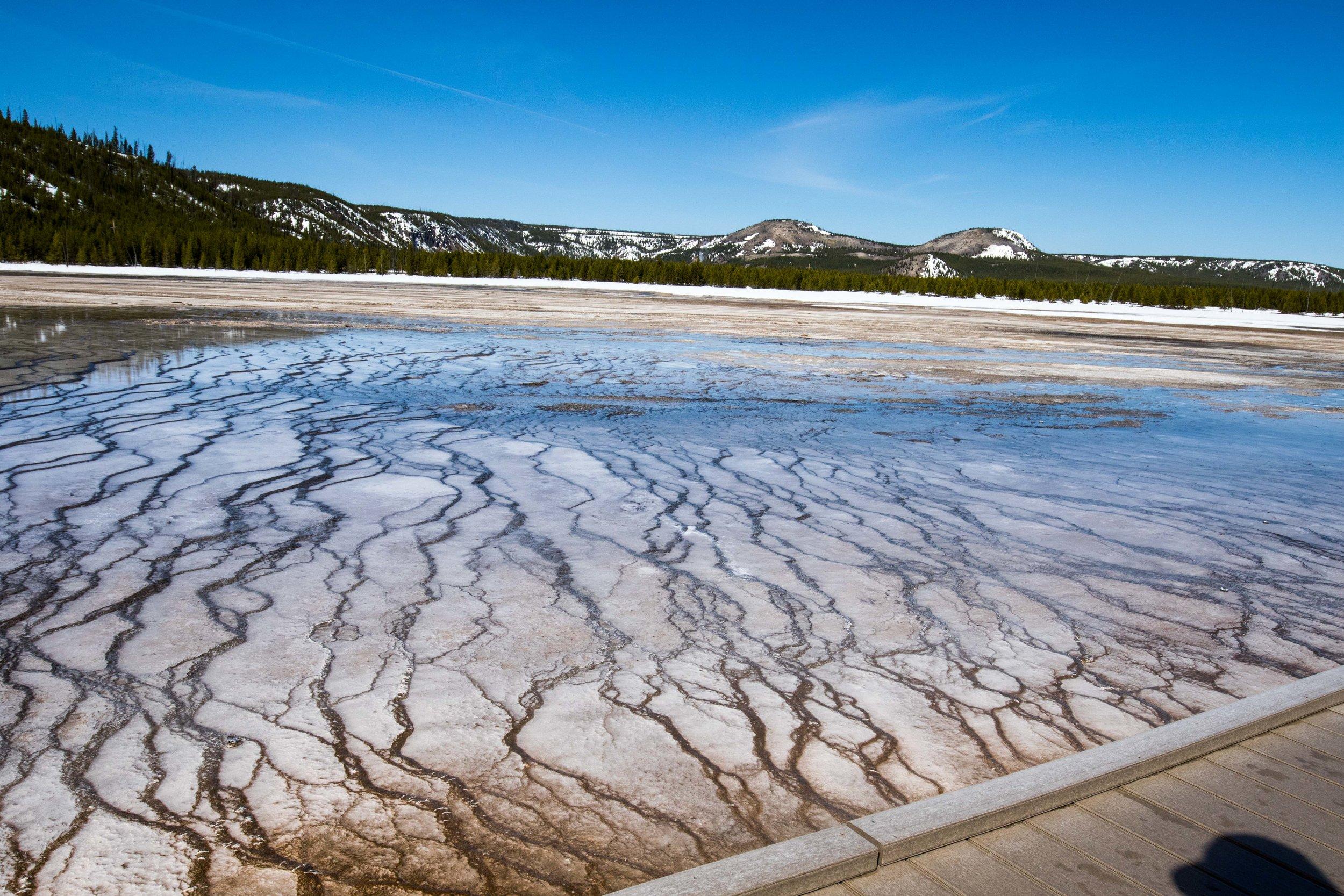 2019_Yellowstone-503.jpg