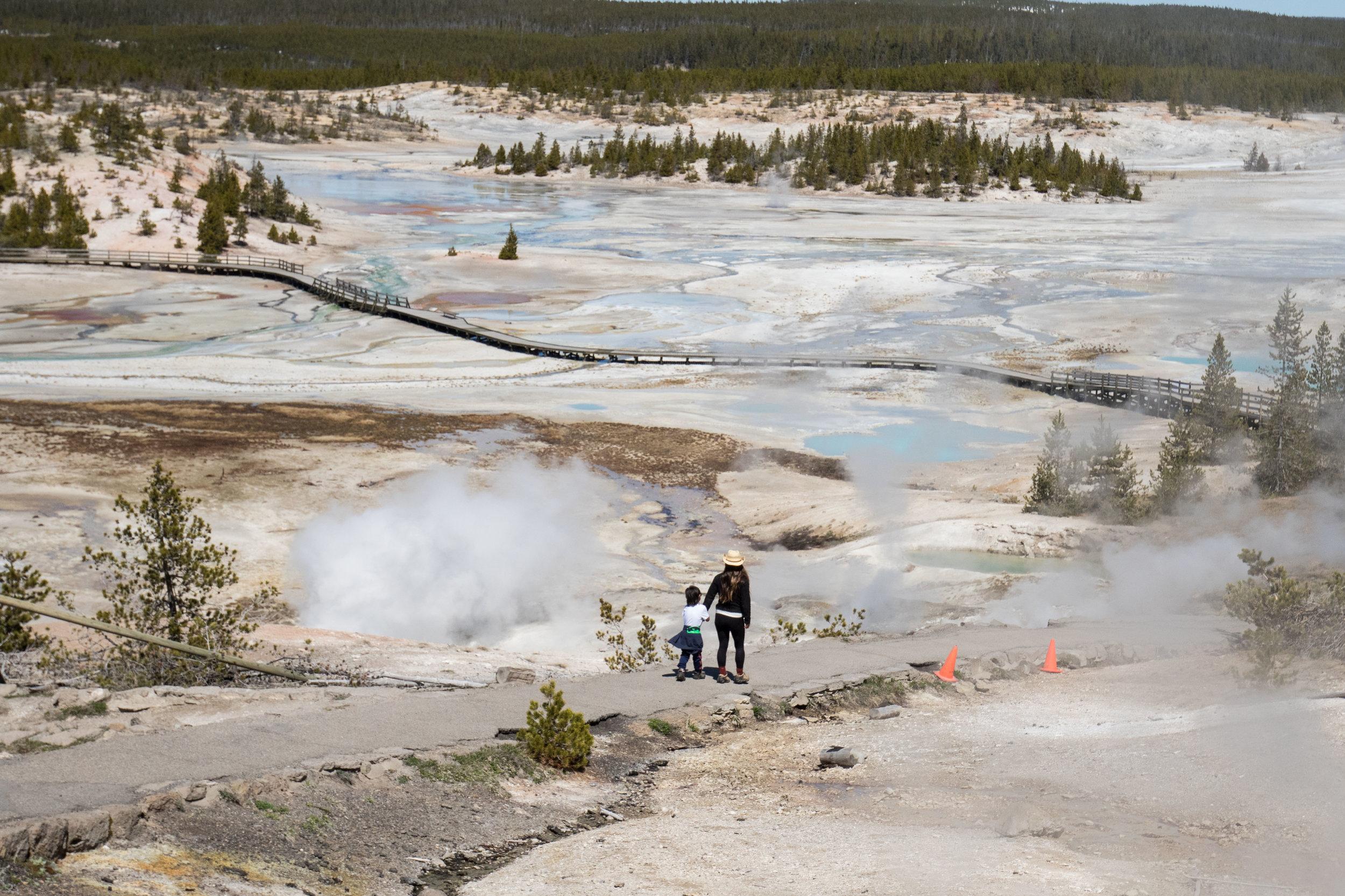 2019_Yellowstone-576.jpg