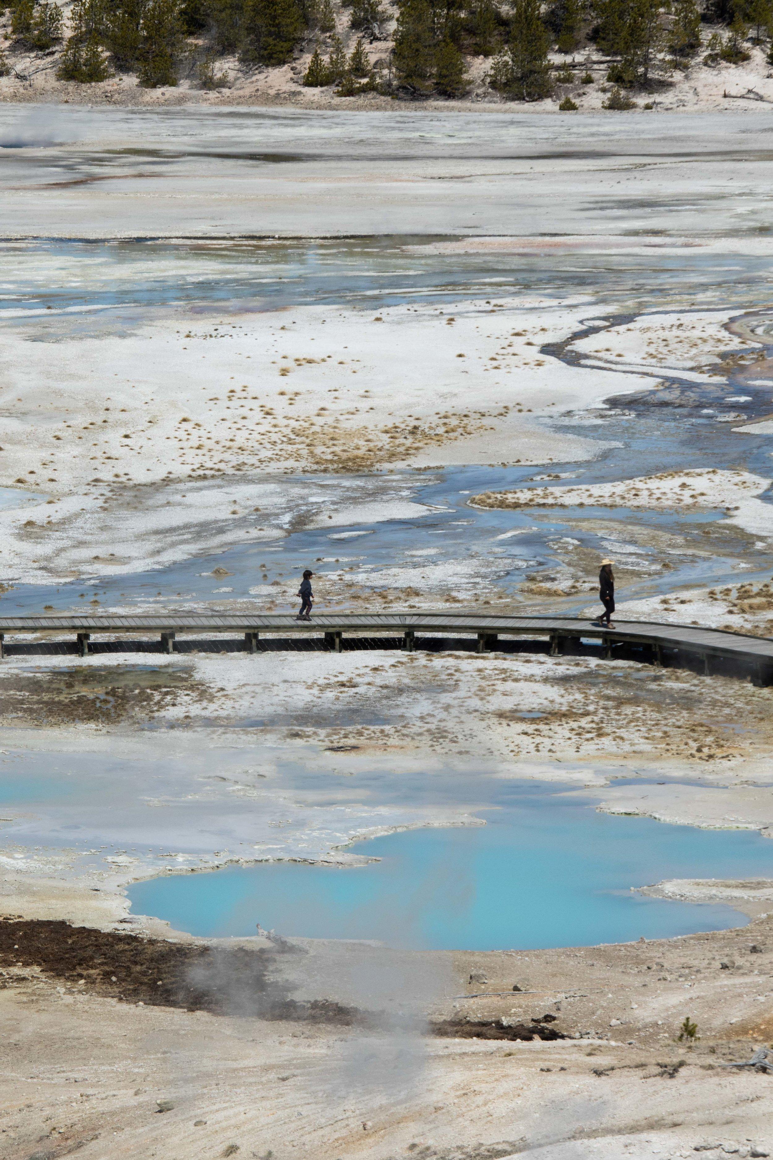 2019_Yellowstone-597.jpg