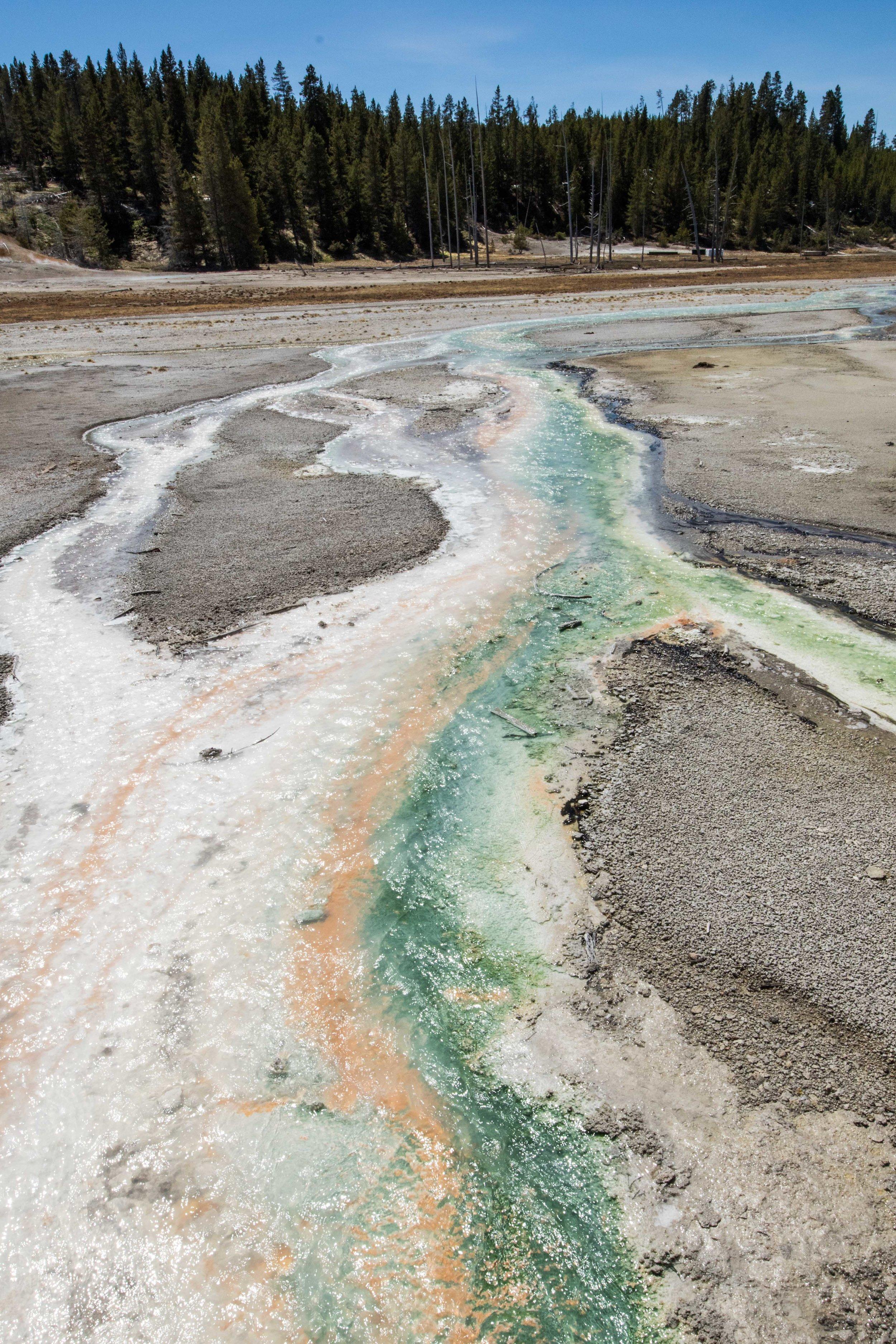 2019_Yellowstone-627.jpg