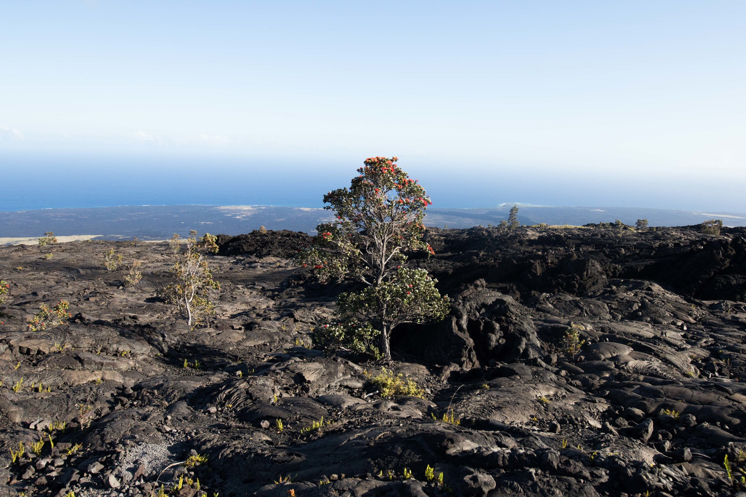 Hawaii's Volcanos - National Park