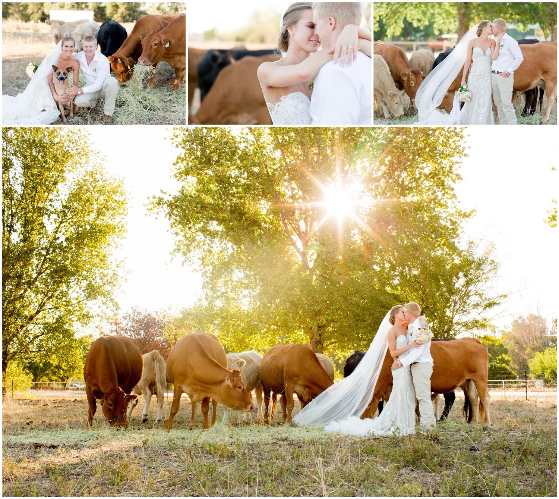 Dubbo Wedding Photography - Country Wedding 11