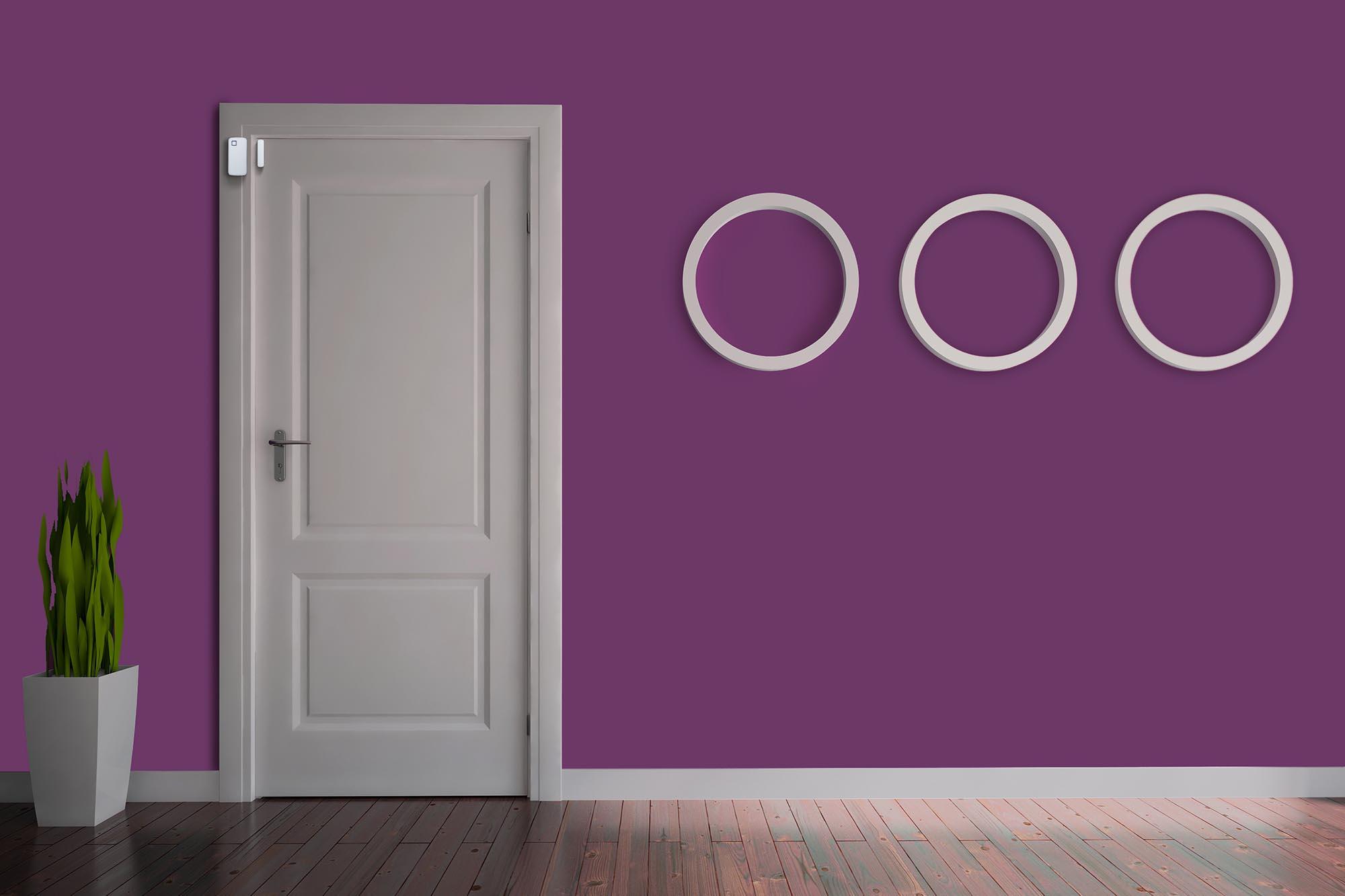 DoorSensor.jpg