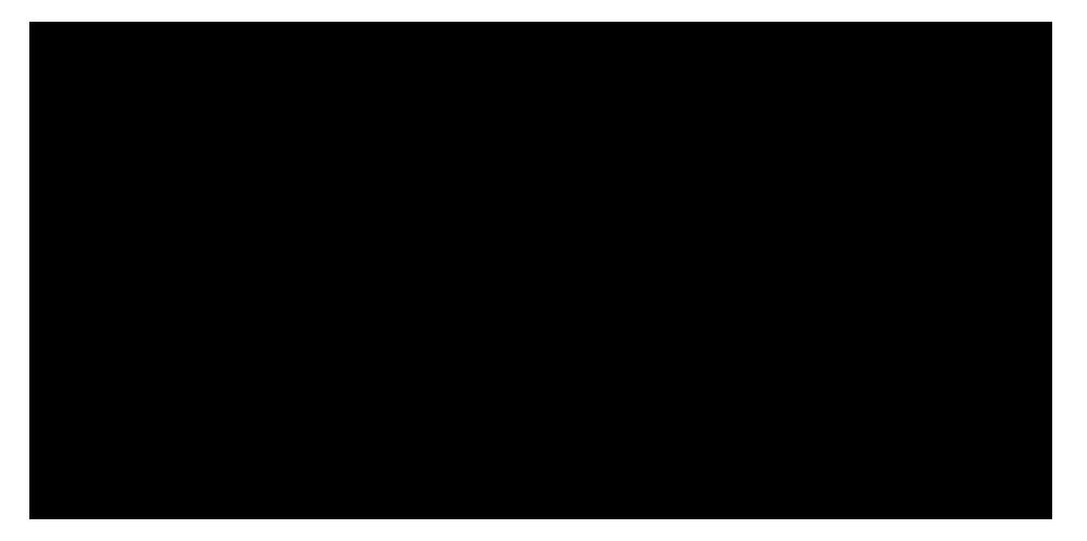 Logo_schwarz Kopie Kopie.png